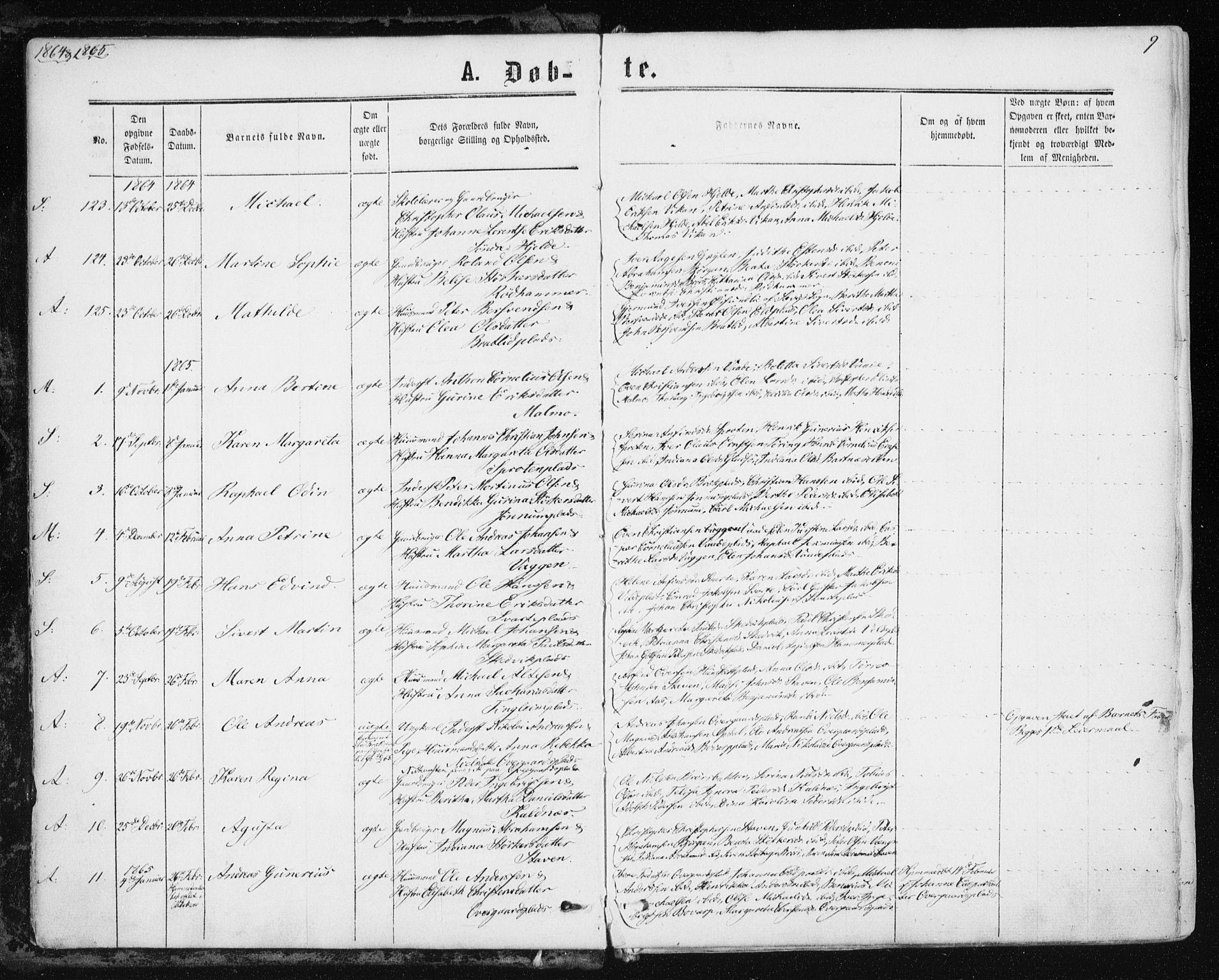 SAT, Ministerialprotokoller, klokkerbøker og fødselsregistre - Nord-Trøndelag, 741/L0394: Ministerialbok nr. 741A08, 1864-1877, s. 9