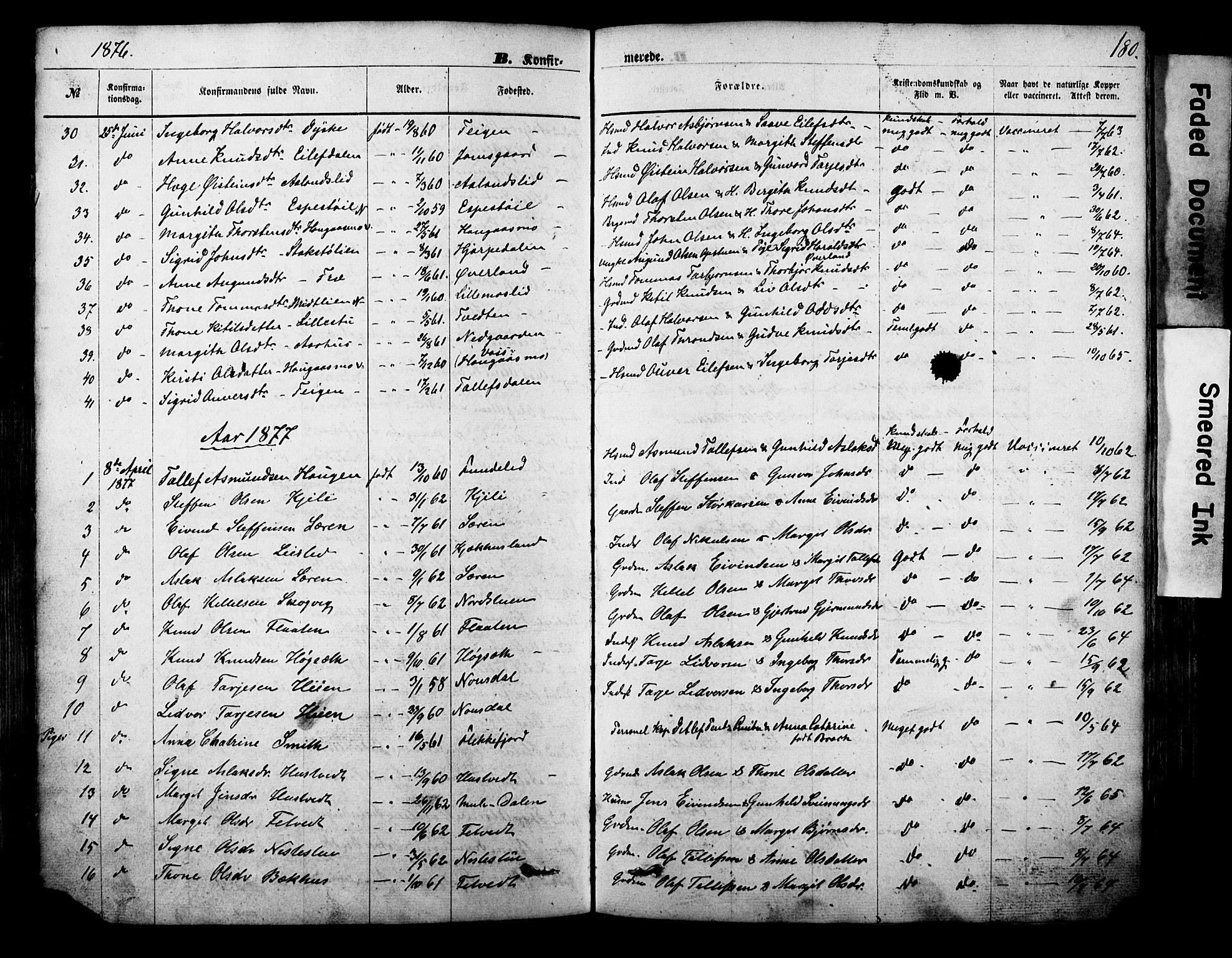 SAKO, Vinje kirkebøker, F/Fa/L0005: Ministerialbok nr. I 5, 1870-1886, s. 180