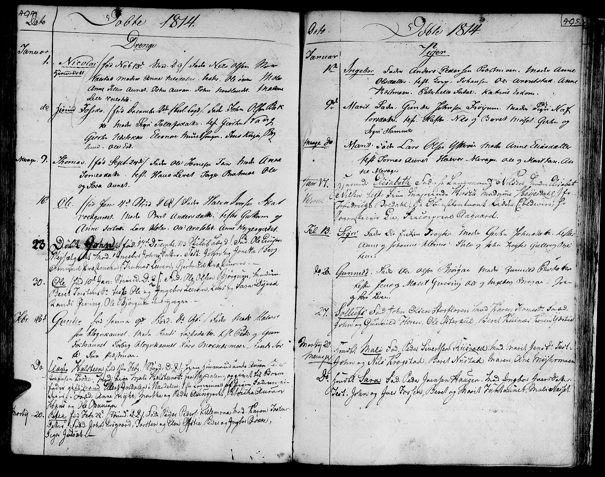 SAT, Ministerialprotokoller, klokkerbøker og fødselsregistre - Nord-Trøndelag, 709/L0060: Ministerialbok nr. 709A07, 1797-1815, s. 494-495