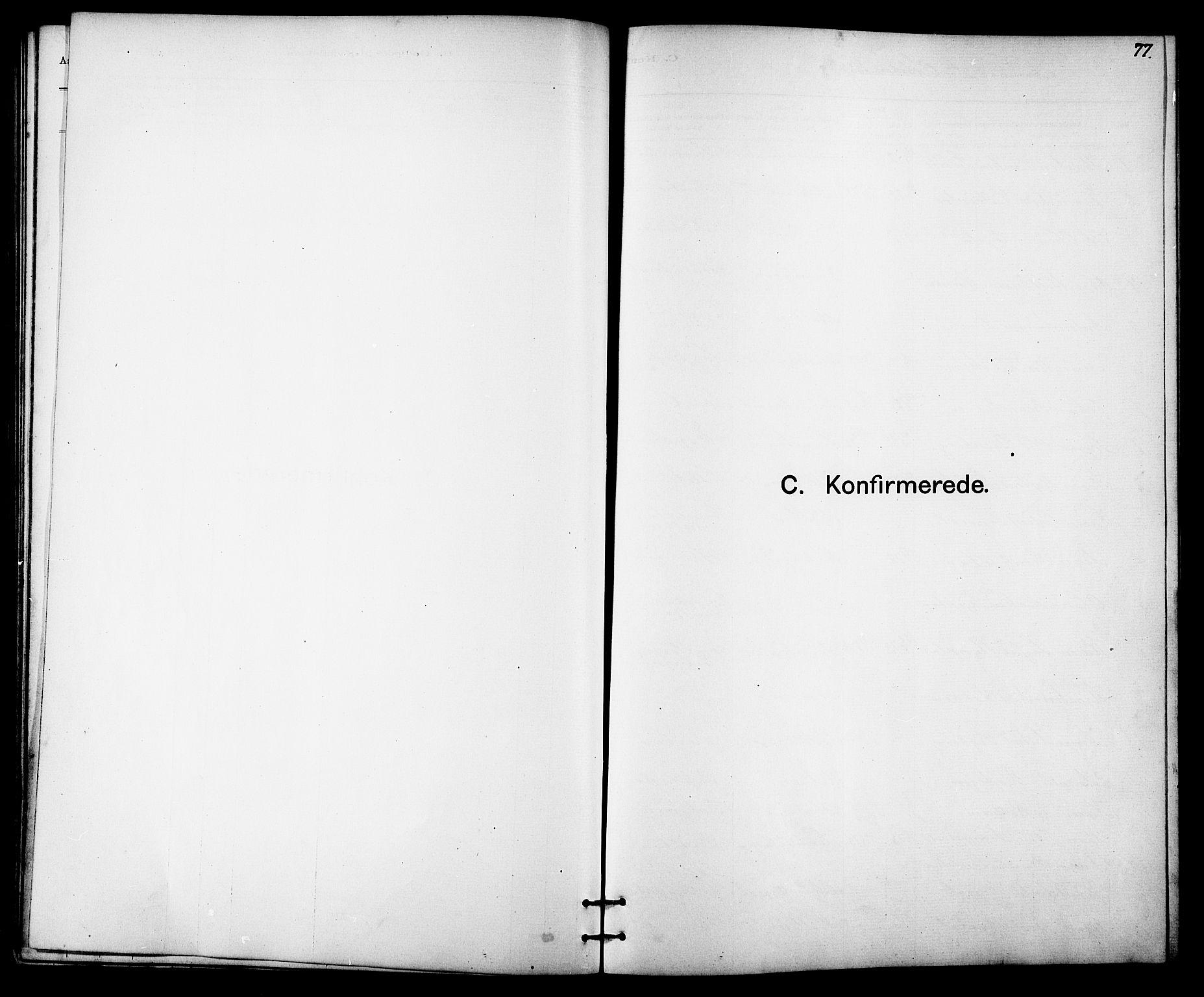 SAT, Ministerialprotokoller, klokkerbøker og fødselsregistre - Sør-Trøndelag, 613/L0395: Klokkerbok nr. 613C03, 1887-1909, s. 77
