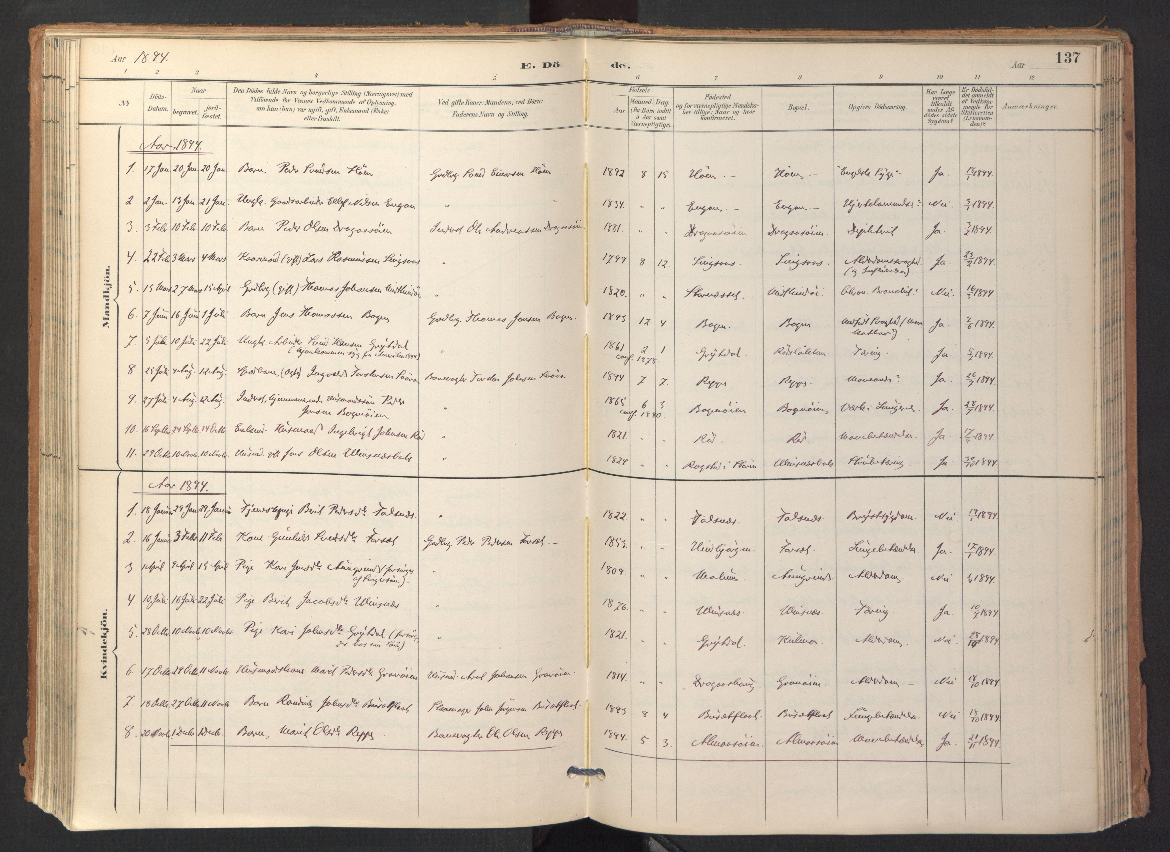 SAT, Ministerialprotokoller, klokkerbøker og fødselsregistre - Sør-Trøndelag, 688/L1025: Ministerialbok nr. 688A02, 1891-1909, s. 137