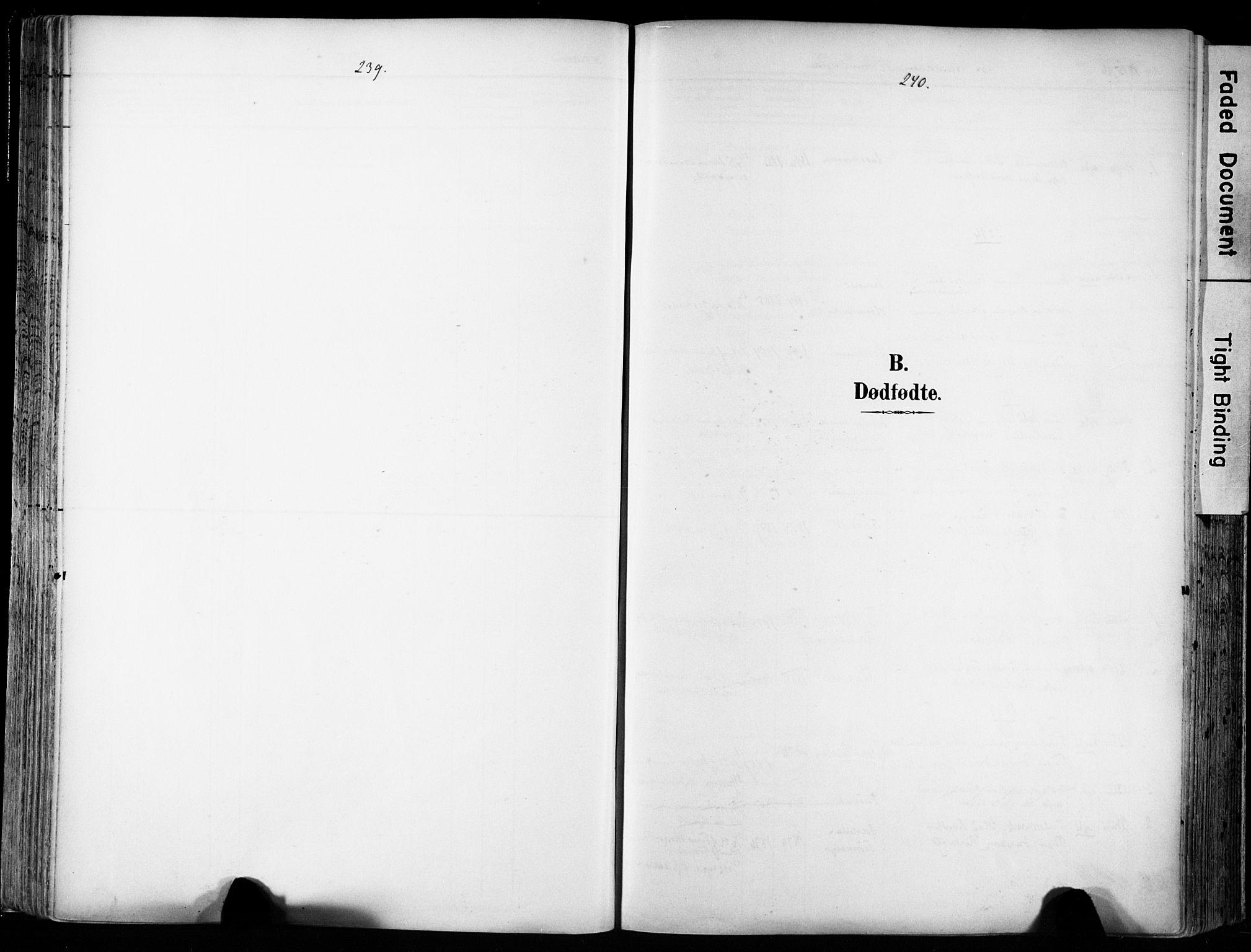 SAT, Ministerialprotokoller, klokkerbøker og fødselsregistre - Sør-Trøndelag, 606/L0301: Ministerialbok nr. 606A16, 1894-1907, s. 239-240
