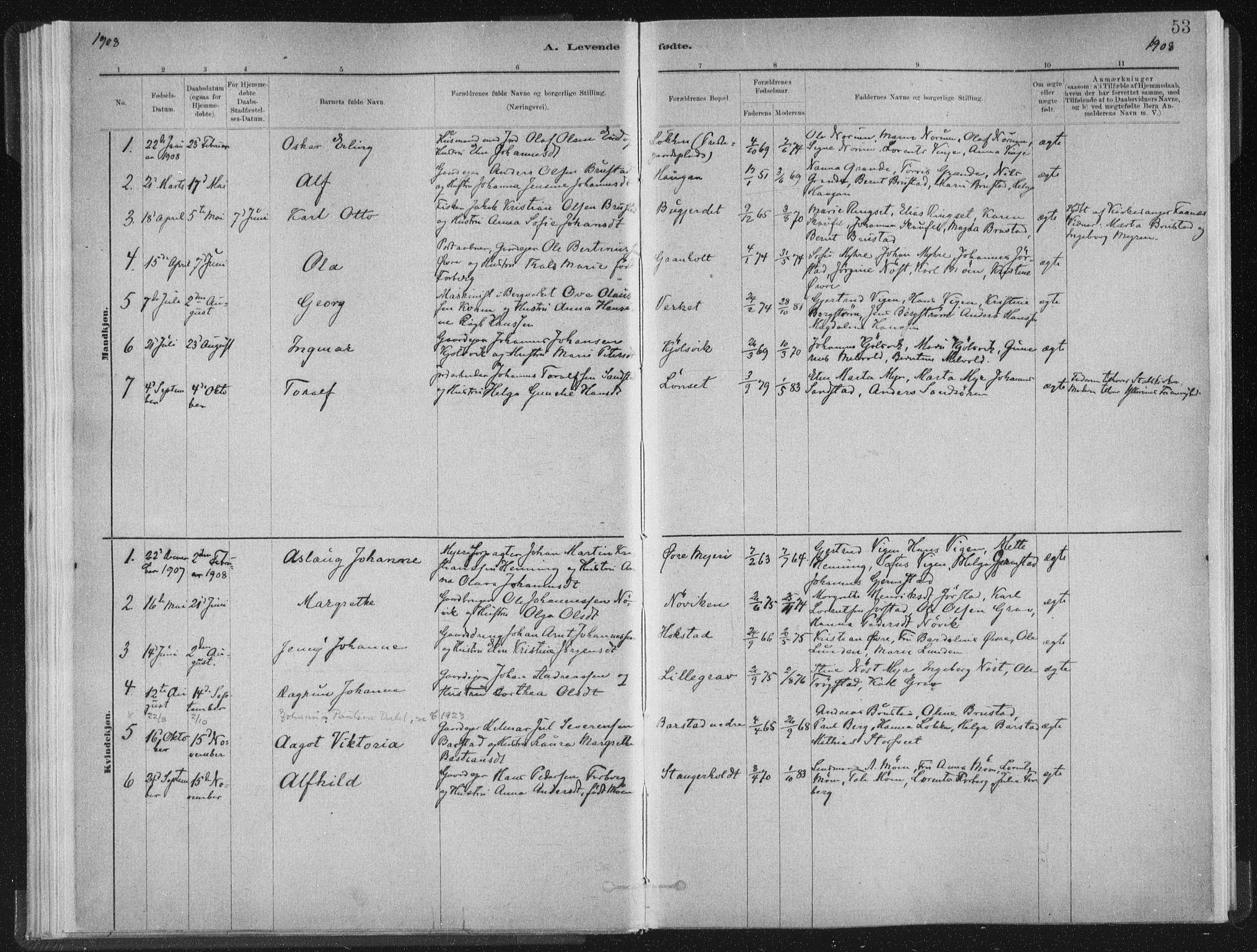 SAT, Ministerialprotokoller, klokkerbøker og fødselsregistre - Nord-Trøndelag, 722/L0220: Ministerialbok nr. 722A07, 1881-1908, s. 53