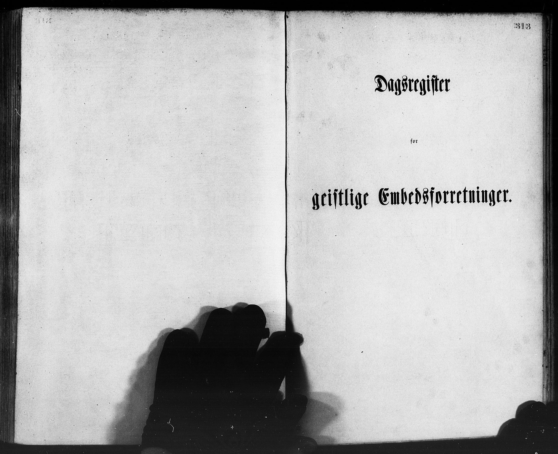 SAB, Manger sokneprestembete, H/Haa: Ministerialbok nr. A 8, 1871-1880, s. 313