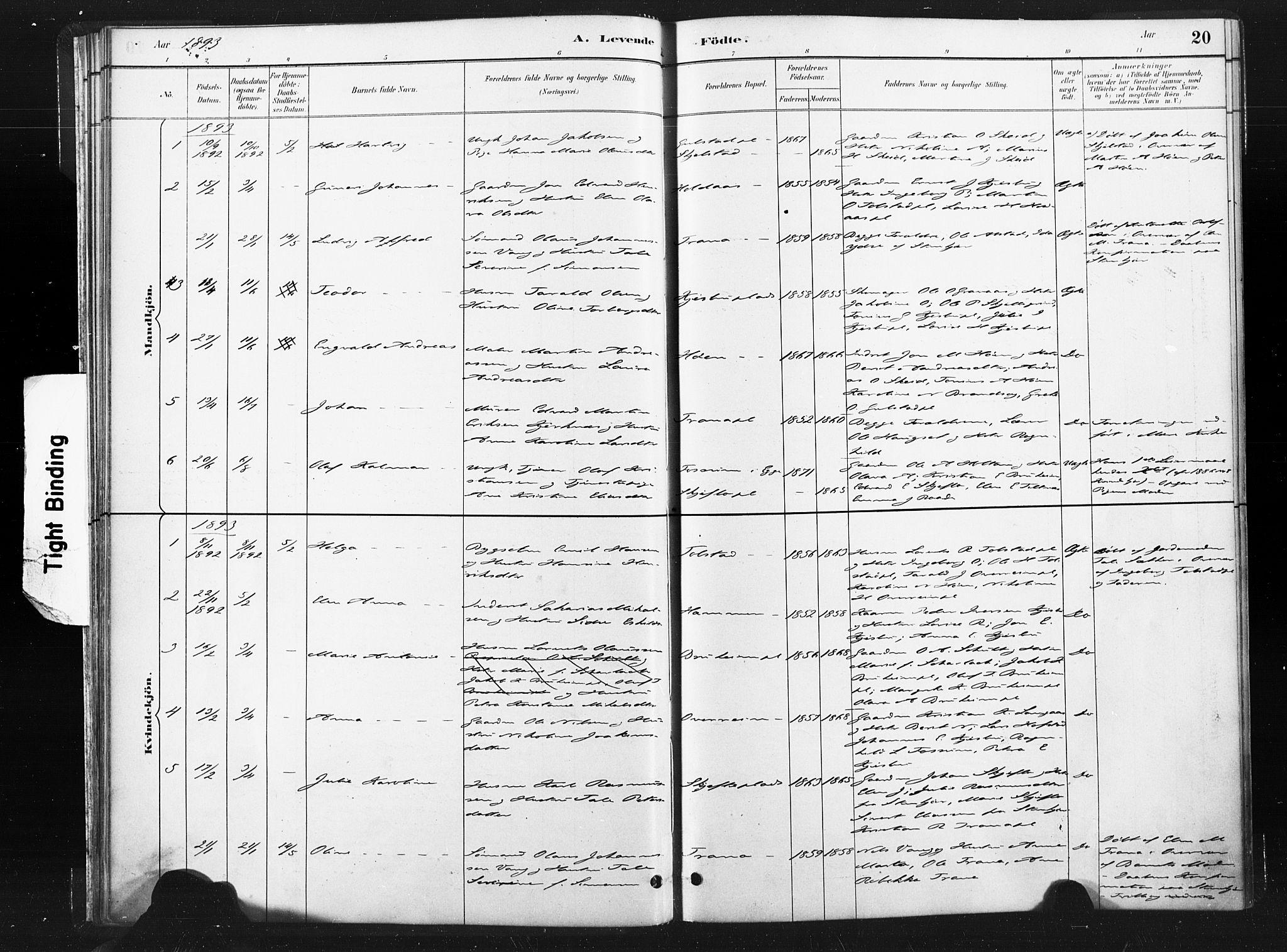 SAT, Ministerialprotokoller, klokkerbøker og fødselsregistre - Nord-Trøndelag, 736/L0361: Ministerialbok nr. 736A01, 1884-1906, s. 20