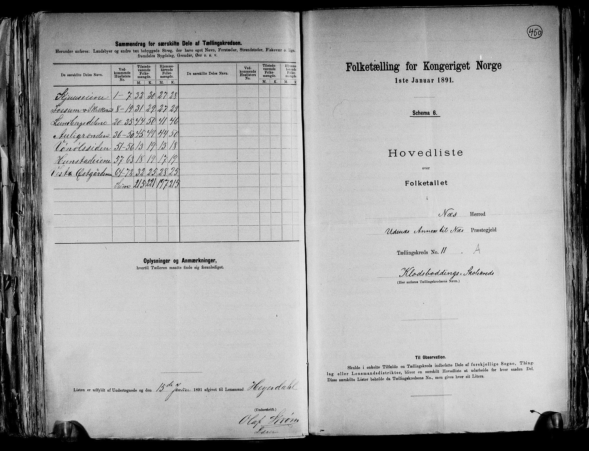 RA, Folketelling 1891 for 0236 Nes herred, 1891, s. 29