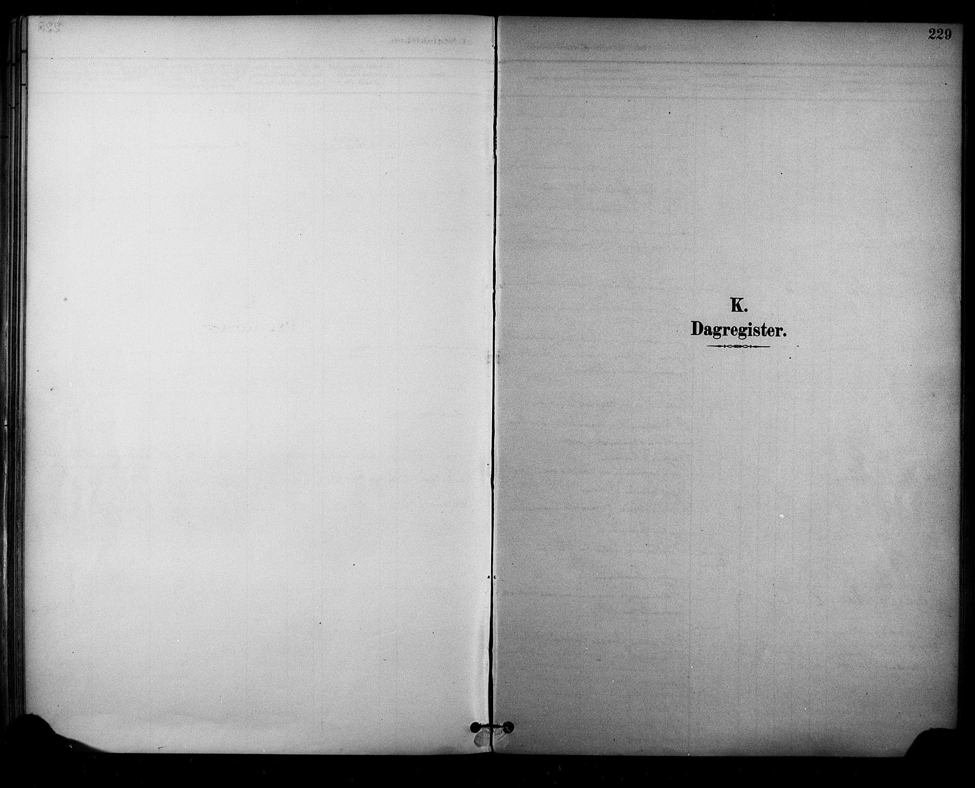 SAKO, Sauherad kirkebøker, F/Fa/L0009: Ministerialbok nr. I 9, 1887-1912, s. 229