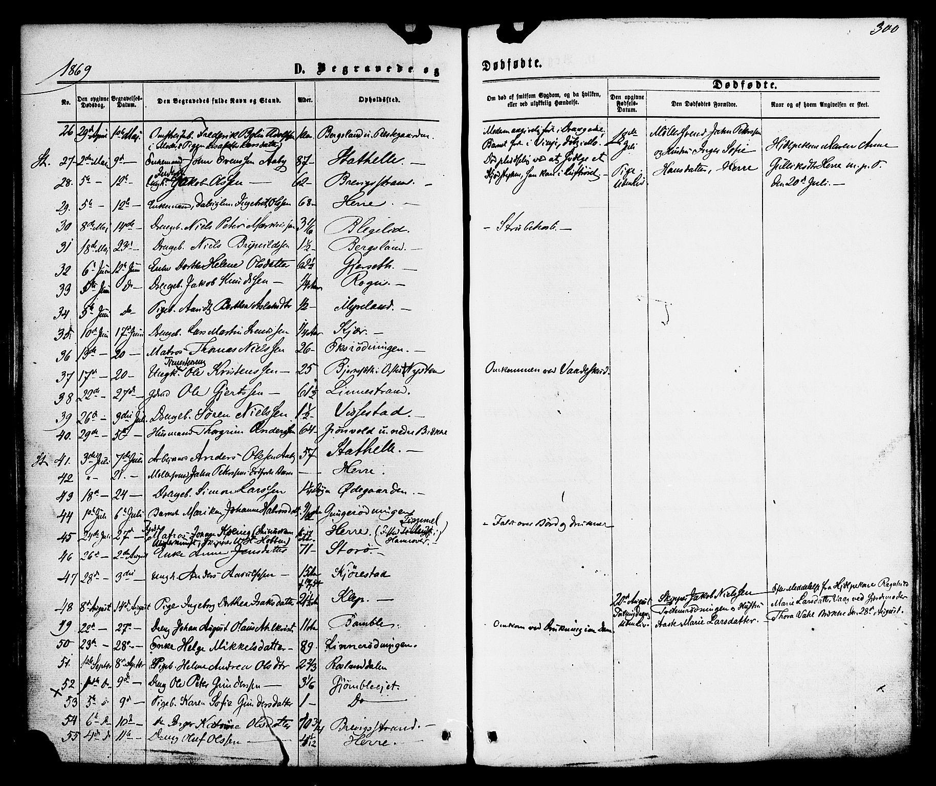 SAKO, Bamble kirkebøker, F/Fa/L0006: Ministerialbok nr. I 6, 1869-1877, s. 300