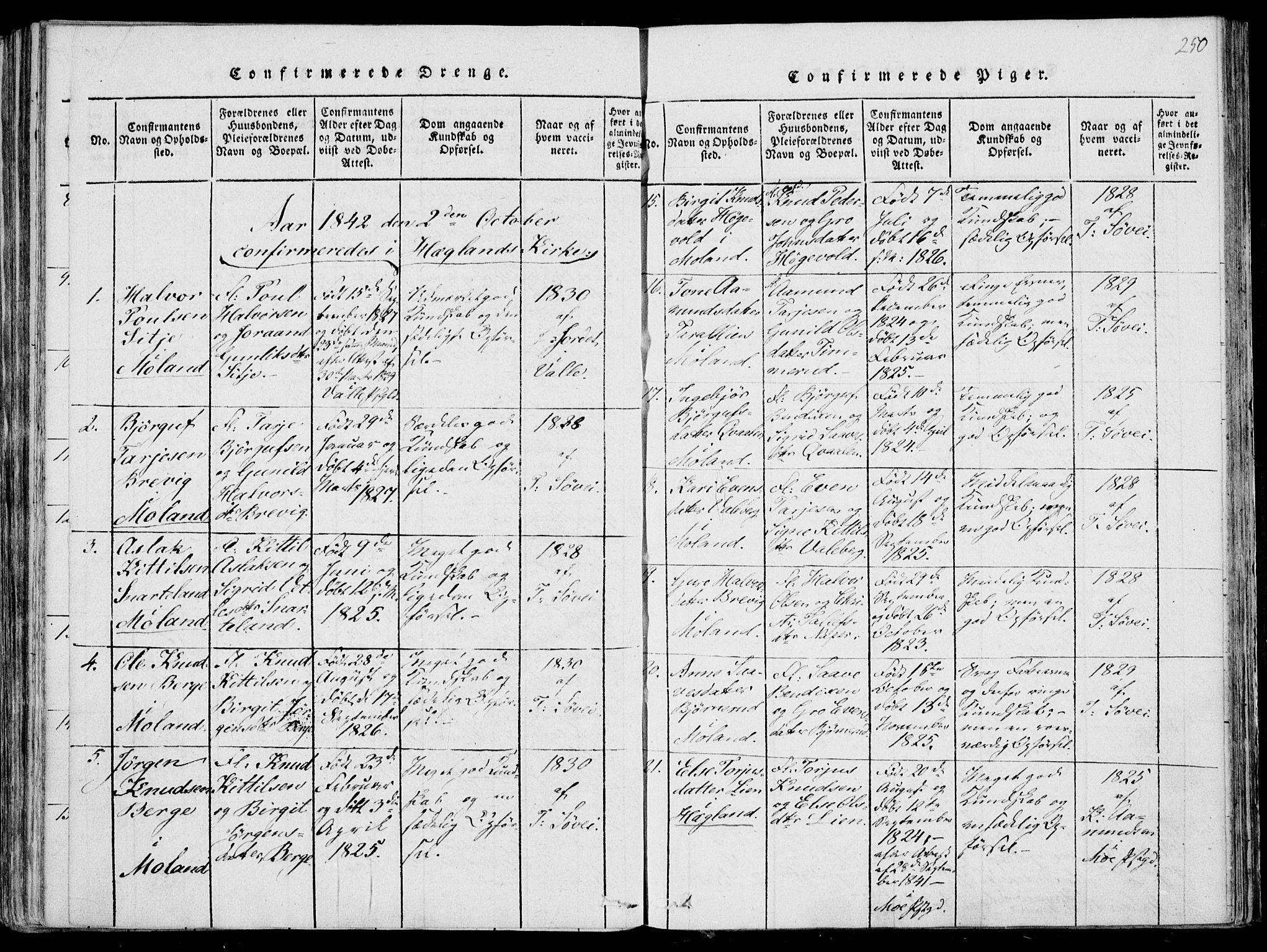 SAKO, Fyresdal kirkebøker, F/Fa/L0004: Ministerialbok nr. I 4, 1815-1854, s. 250