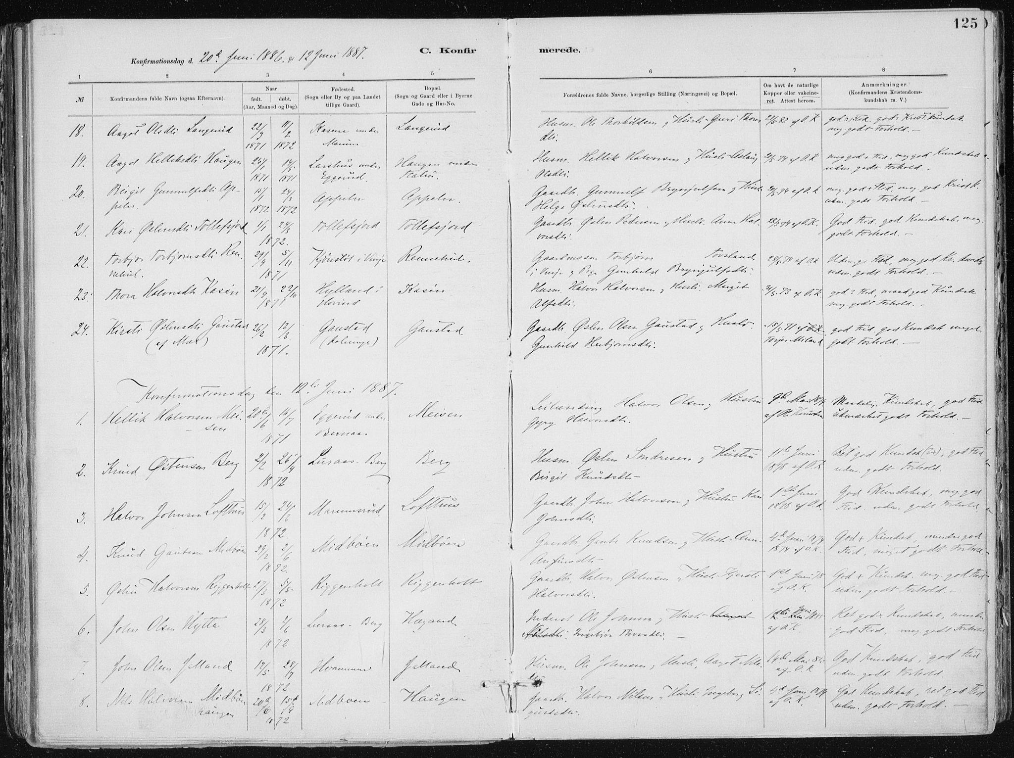 SAKO, Tinn kirkebøker, F/Fa/L0007: Ministerialbok nr. I 7, 1878-1922, s. 125