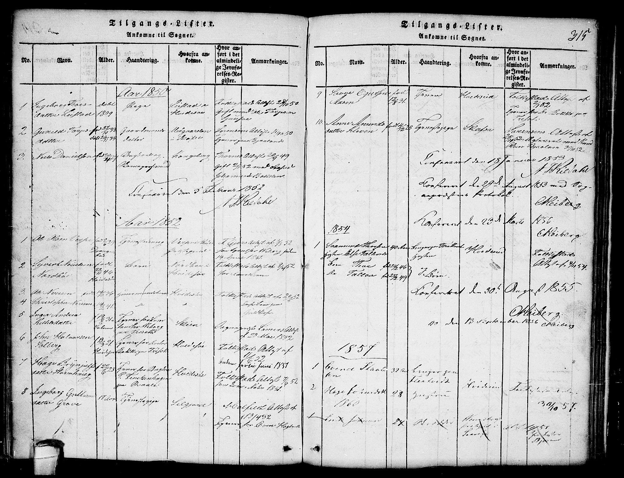 SAKO, Lårdal kirkebøker, G/Ga/L0001: Klokkerbok nr. I 1, 1815-1861, s. 315
