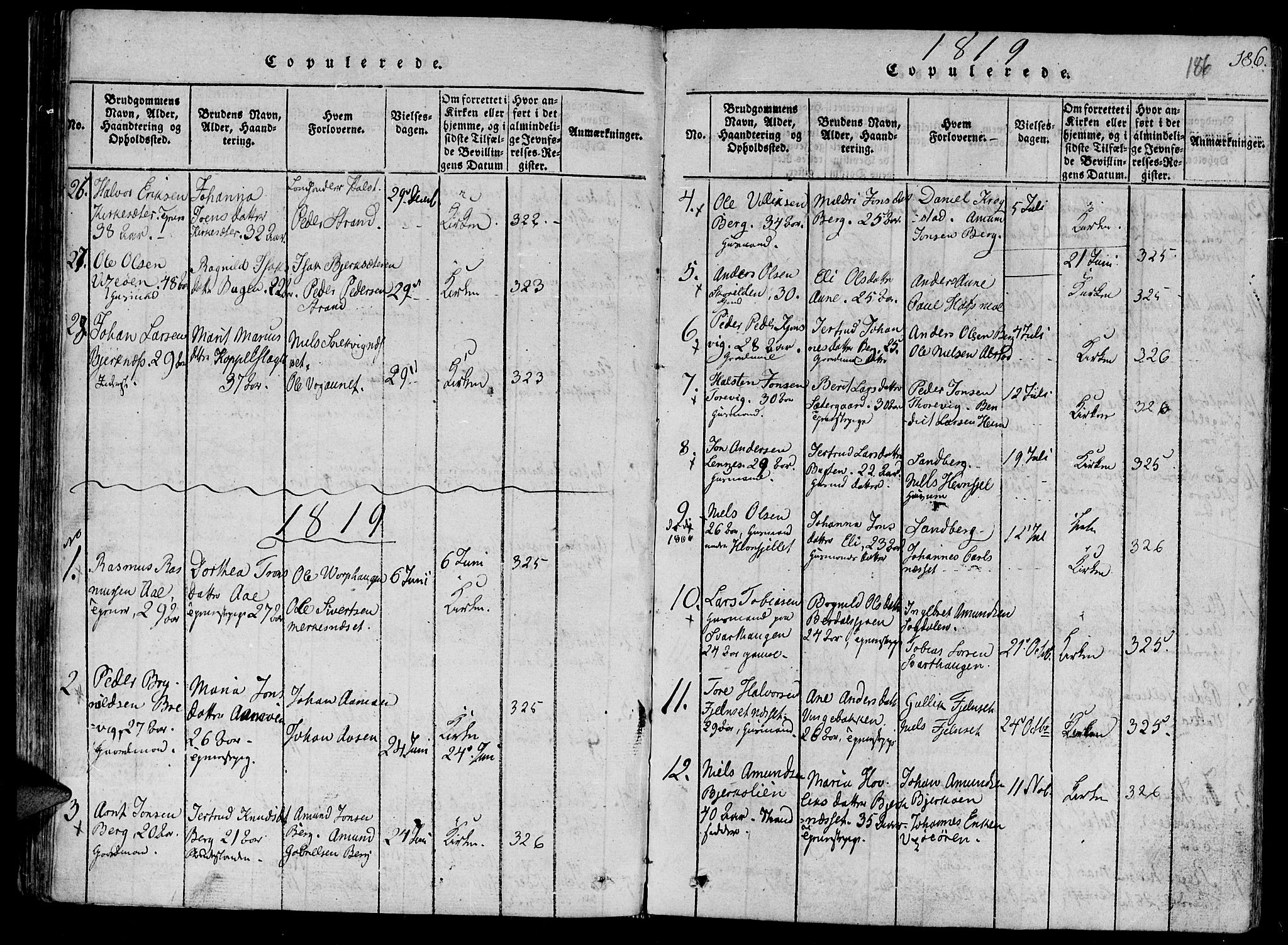 SAT, Ministerialprotokoller, klokkerbøker og fødselsregistre - Sør-Trøndelag, 630/L0491: Ministerialbok nr. 630A04, 1818-1830, s. 186