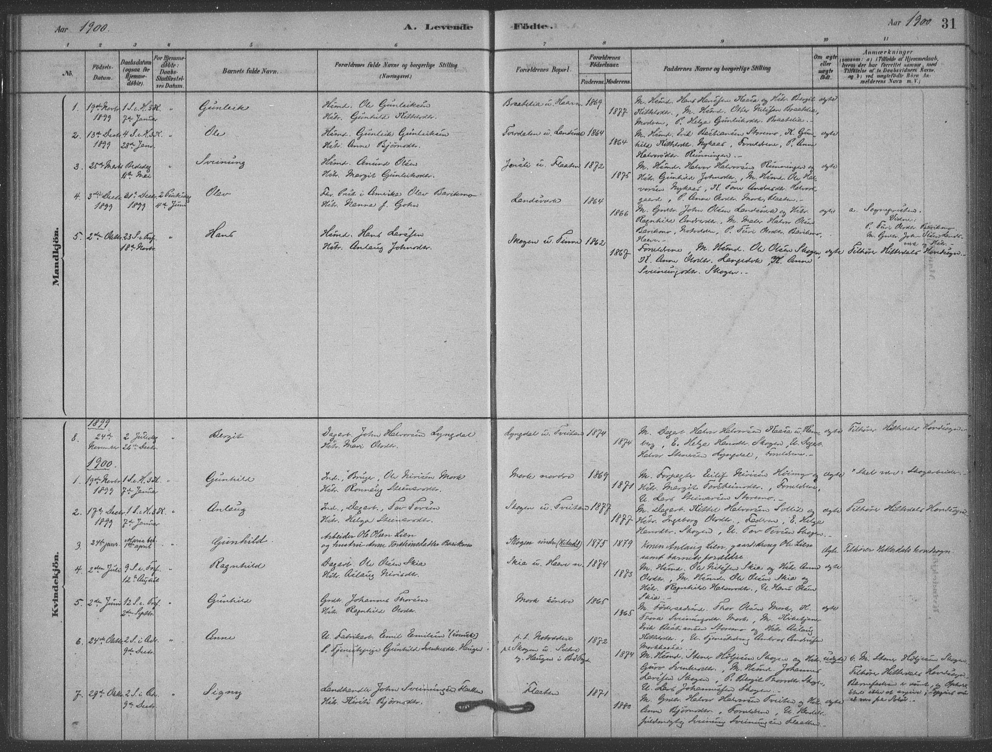 SAKO, Heddal kirkebøker, F/Fb/L0002: Ministerialbok nr. II 2, 1878-1913, s. 31