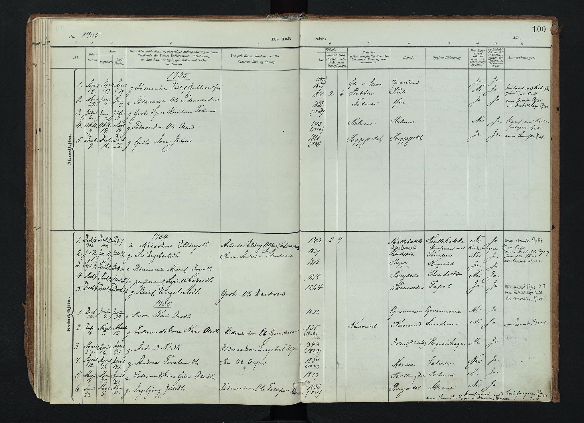 SAH, Nord-Aurdal prestekontor, Ministerialbok nr. 17, 1897-1926, s. 100
