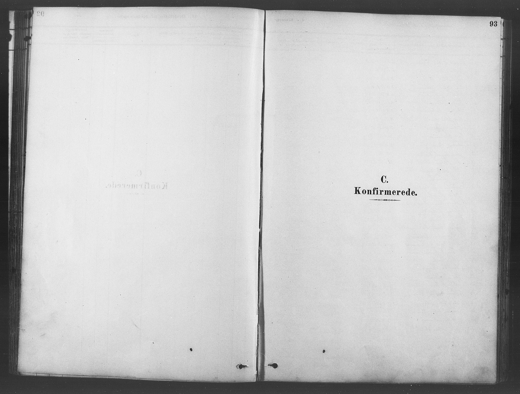 SAO, Ullensaker prestekontor Kirkebøker, F/Fb/L0001: Ministerialbok nr. II 1, 1878-1893, s. 93