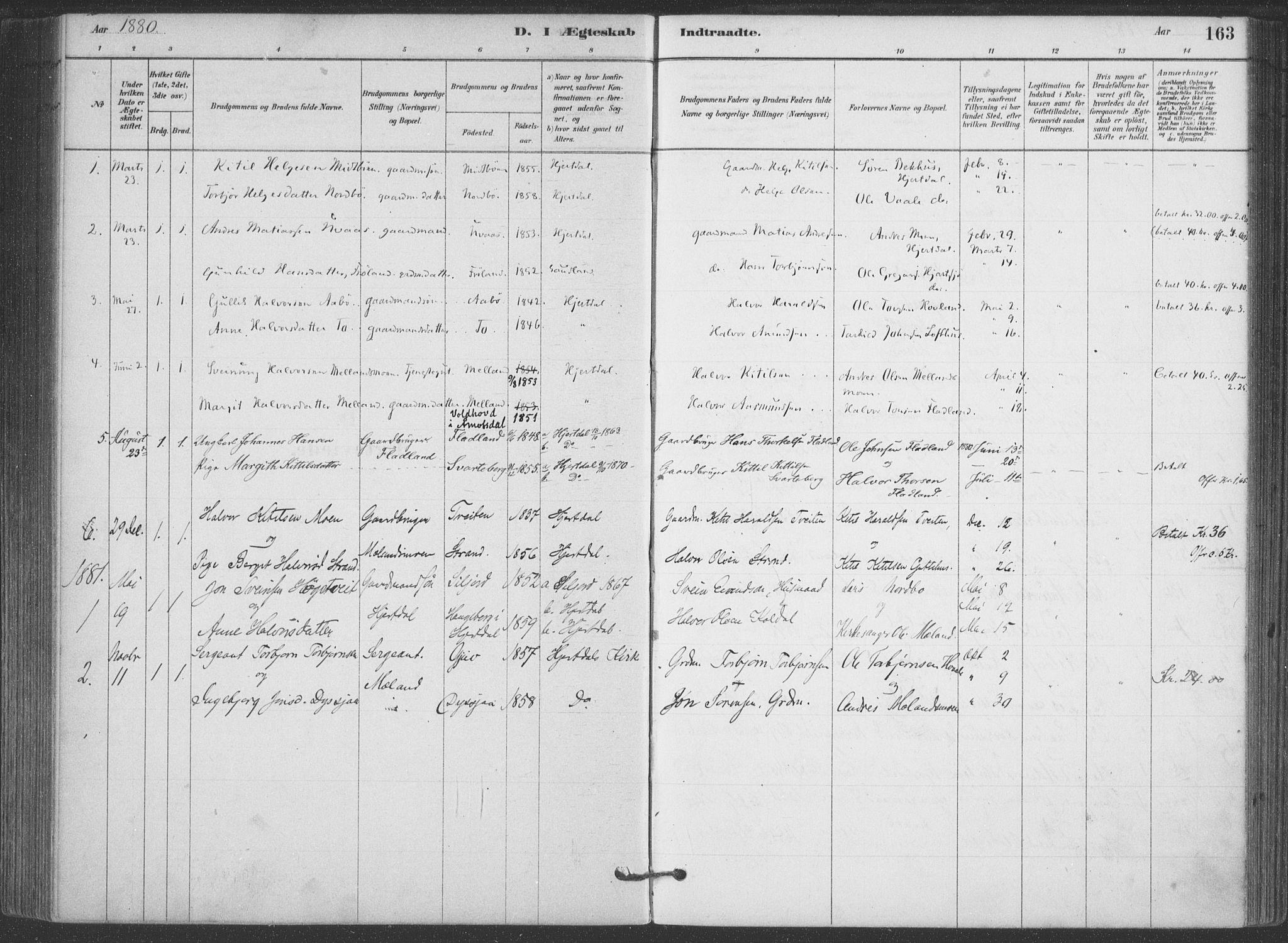 SAKO, Hjartdal kirkebøker, F/Fa/L0010: Ministerialbok nr. I 10, 1880-1929, s. 163