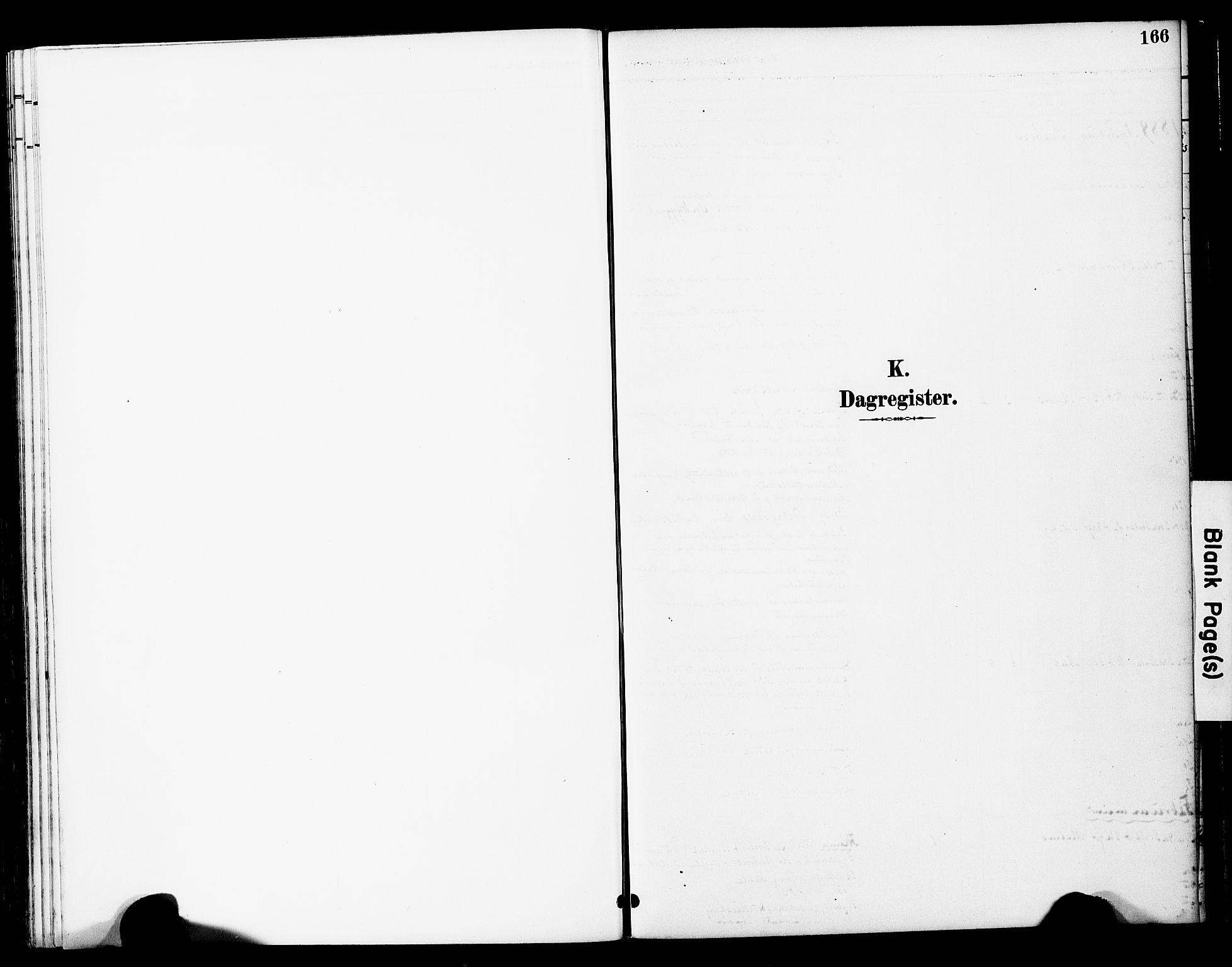 SAT, Ministerialprotokoller, klokkerbøker og fødselsregistre - Nord-Trøndelag, 741/L0396: Ministerialbok nr. 741A10, 1889-1901, s. 166
