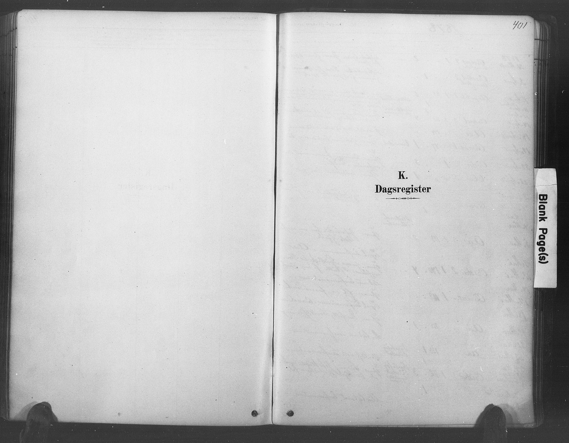 SAK, Lyngdal sokneprestkontor, F/Fa/Fac/L0011: Ministerialbok nr. A 11, 1878-1893, s. 401