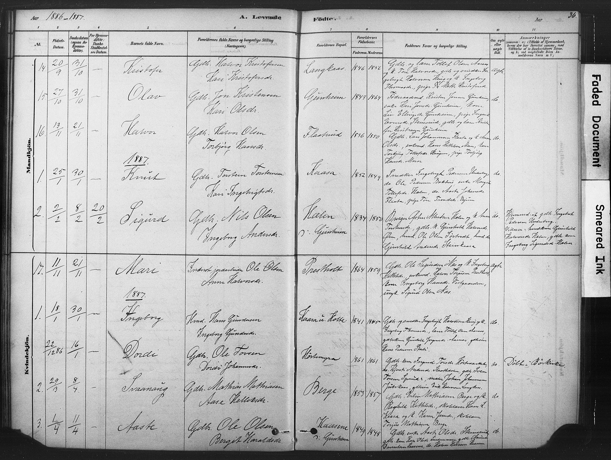 SAKO, Sauherad kirkebøker, F/Fb/L0002: Ministerialbok nr. II 2, 1878-1901, s. 36