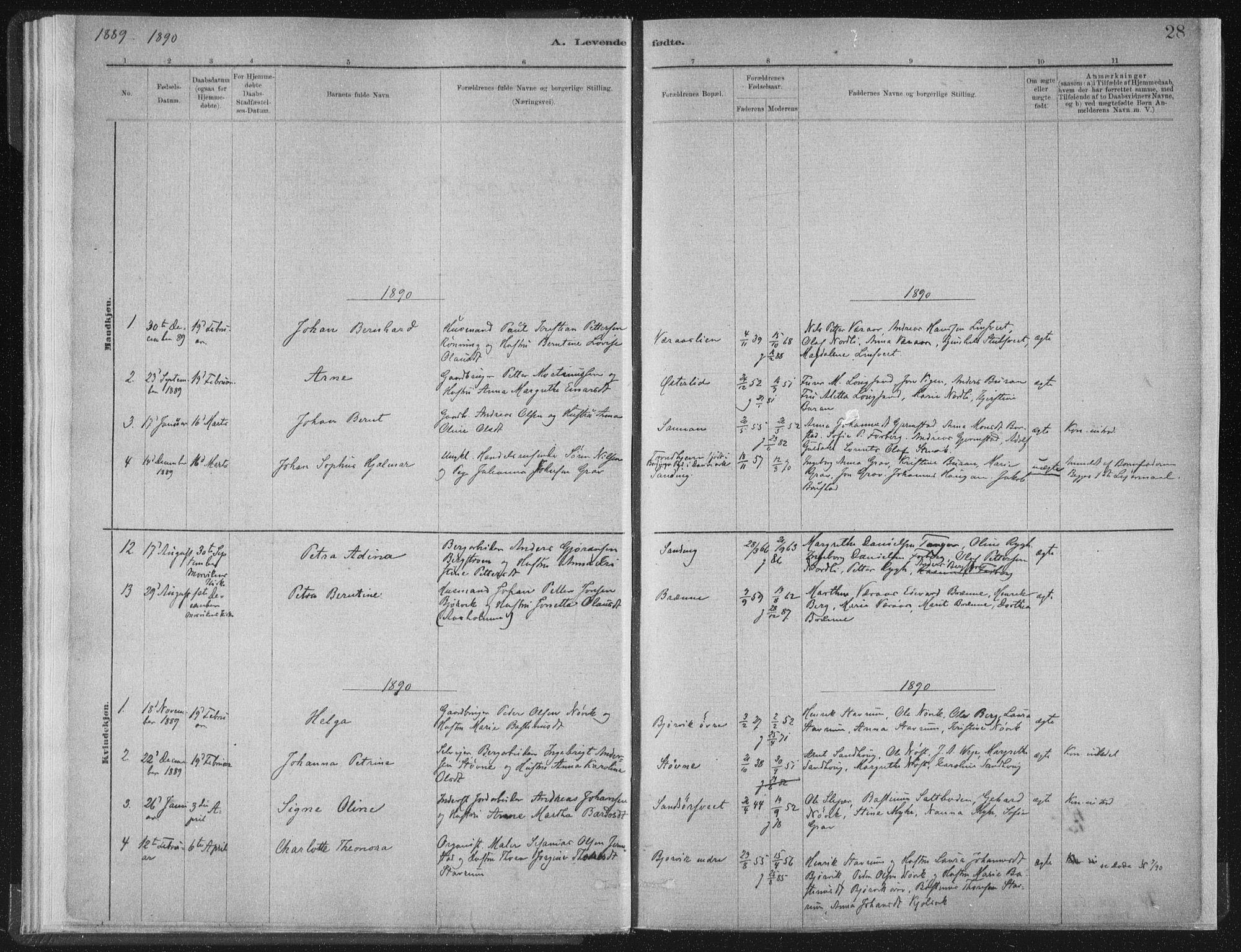 SAT, Ministerialprotokoller, klokkerbøker og fødselsregistre - Nord-Trøndelag, 722/L0220: Ministerialbok nr. 722A07, 1881-1908, s. 28