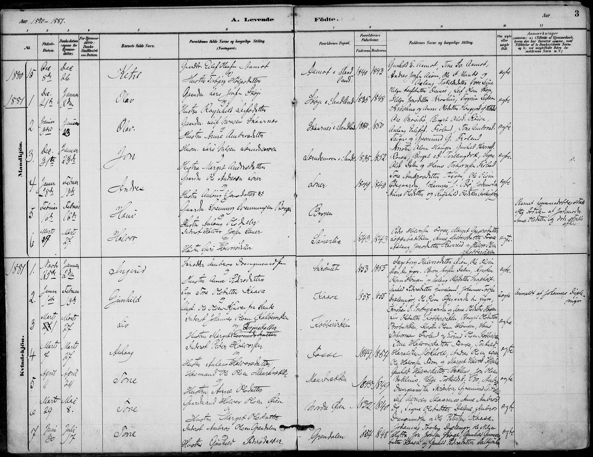 SAKO, Hjartdal kirkebøker, F/Fb/L0002: Ministerialbok nr. II 2, 1880-1932, s. 3