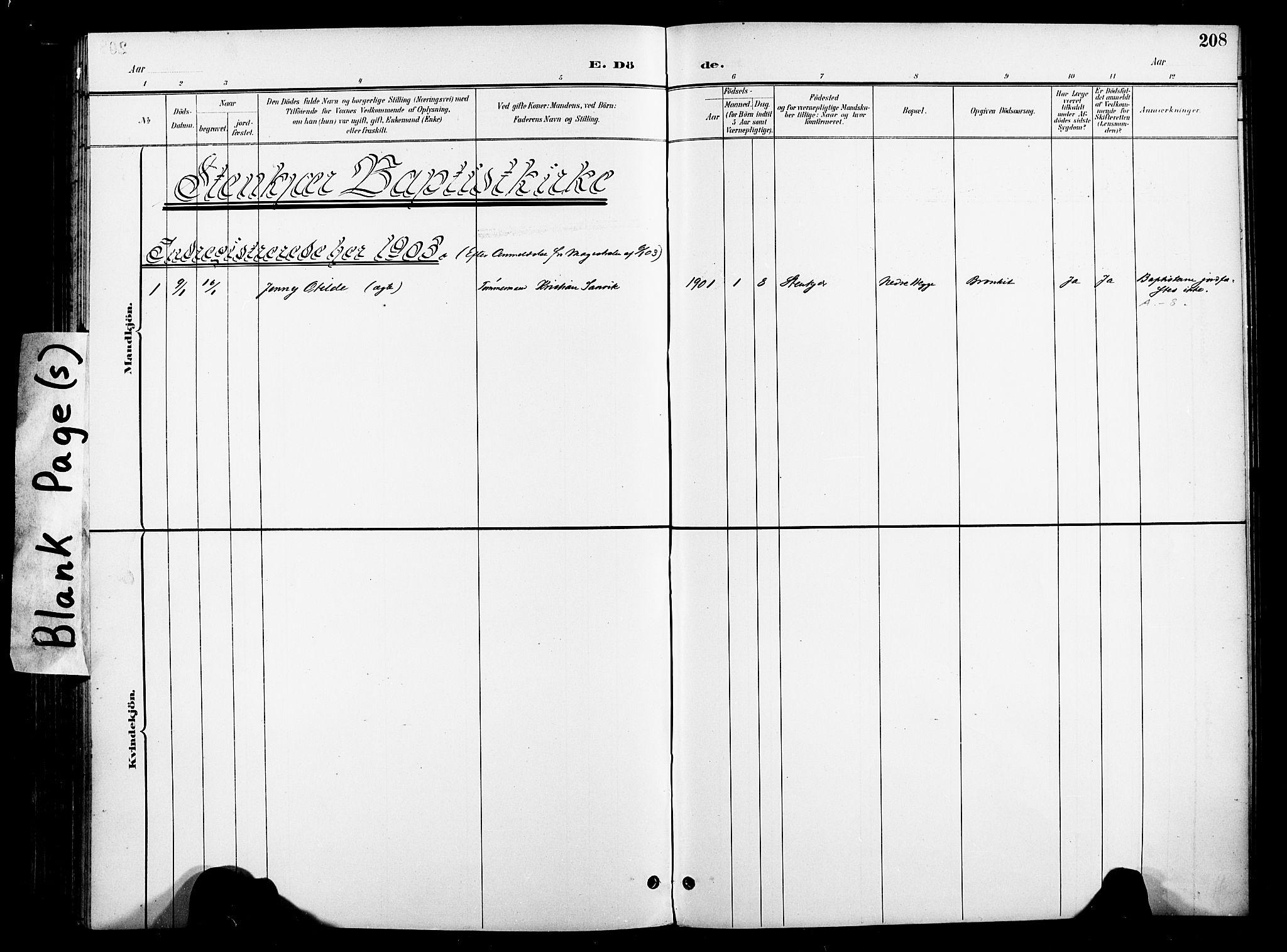 SAT, Ministerialprotokoller, klokkerbøker og fødselsregistre - Nord-Trøndelag, 739/L0372: Ministerialbok nr. 739A04, 1895-1903, s. 208