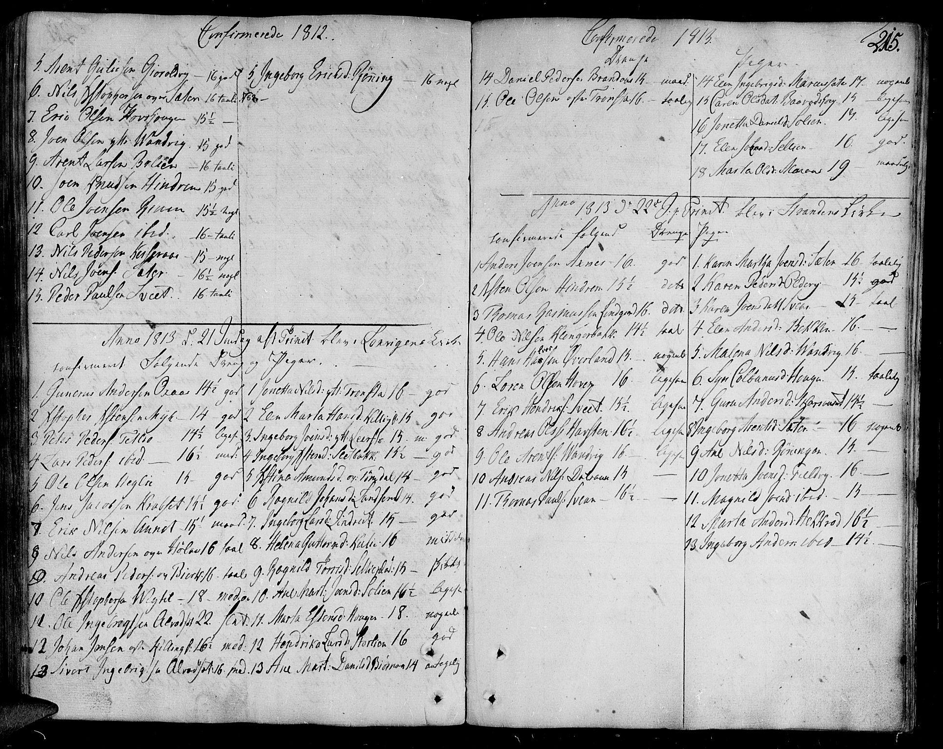 SAT, Ministerialprotokoller, klokkerbøker og fødselsregistre - Nord-Trøndelag, 701/L0004: Ministerialbok nr. 701A04, 1783-1816, s. 215