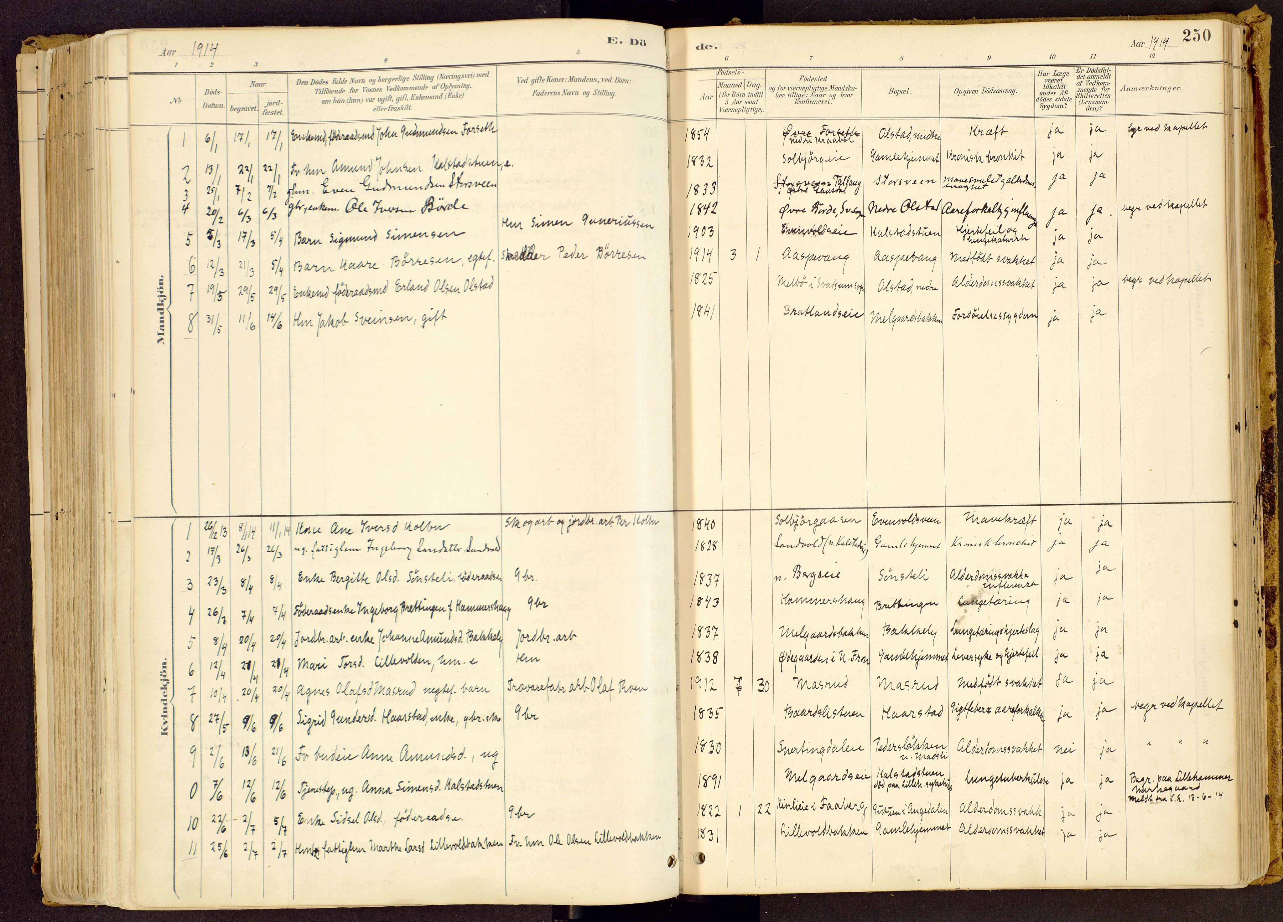SAH, Vestre Gausdal prestekontor, Ministerialbok nr. 1, 1887-1914, s. 250
