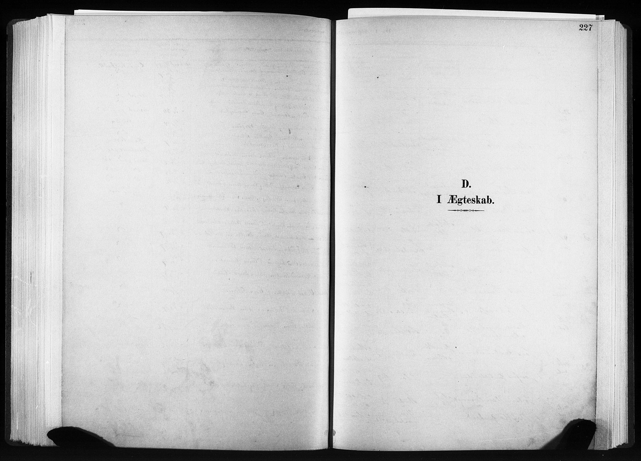 SAT, Ministerialprotokoller, klokkerbøker og fødselsregistre - Sør-Trøndelag, 606/L0300: Ministerialbok nr. 606A15, 1886-1893, s. 227
