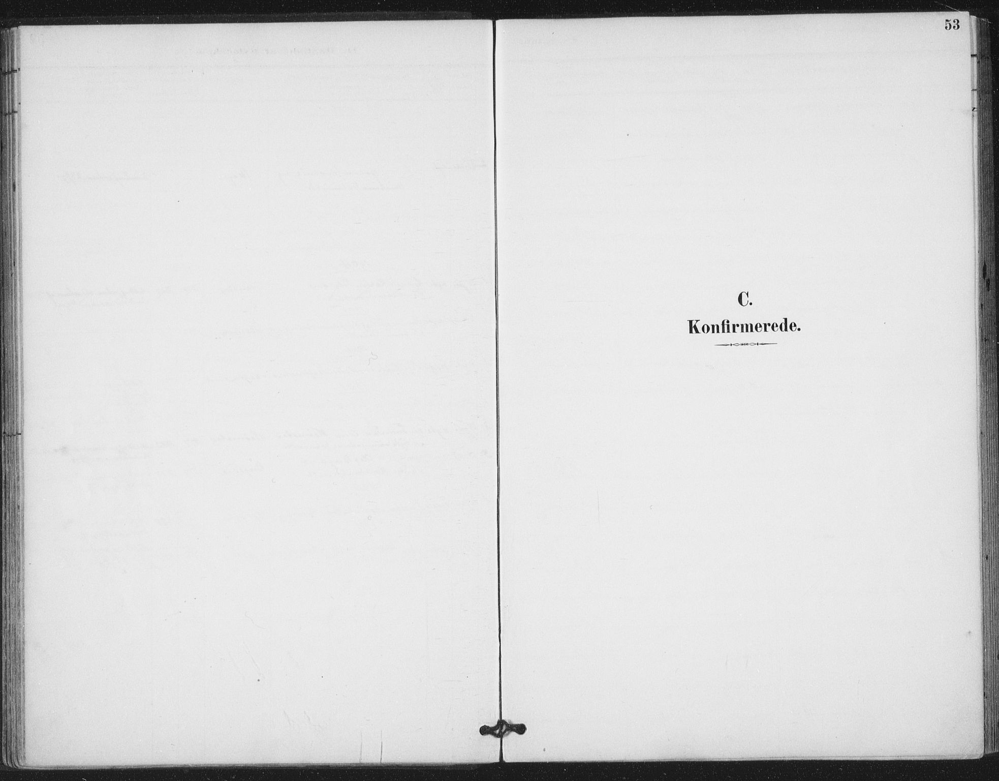 SAT, Ministerialprotokoller, klokkerbøker og fødselsregistre - Nord-Trøndelag, 783/L0660: Ministerialbok nr. 783A02, 1886-1918, s. 53