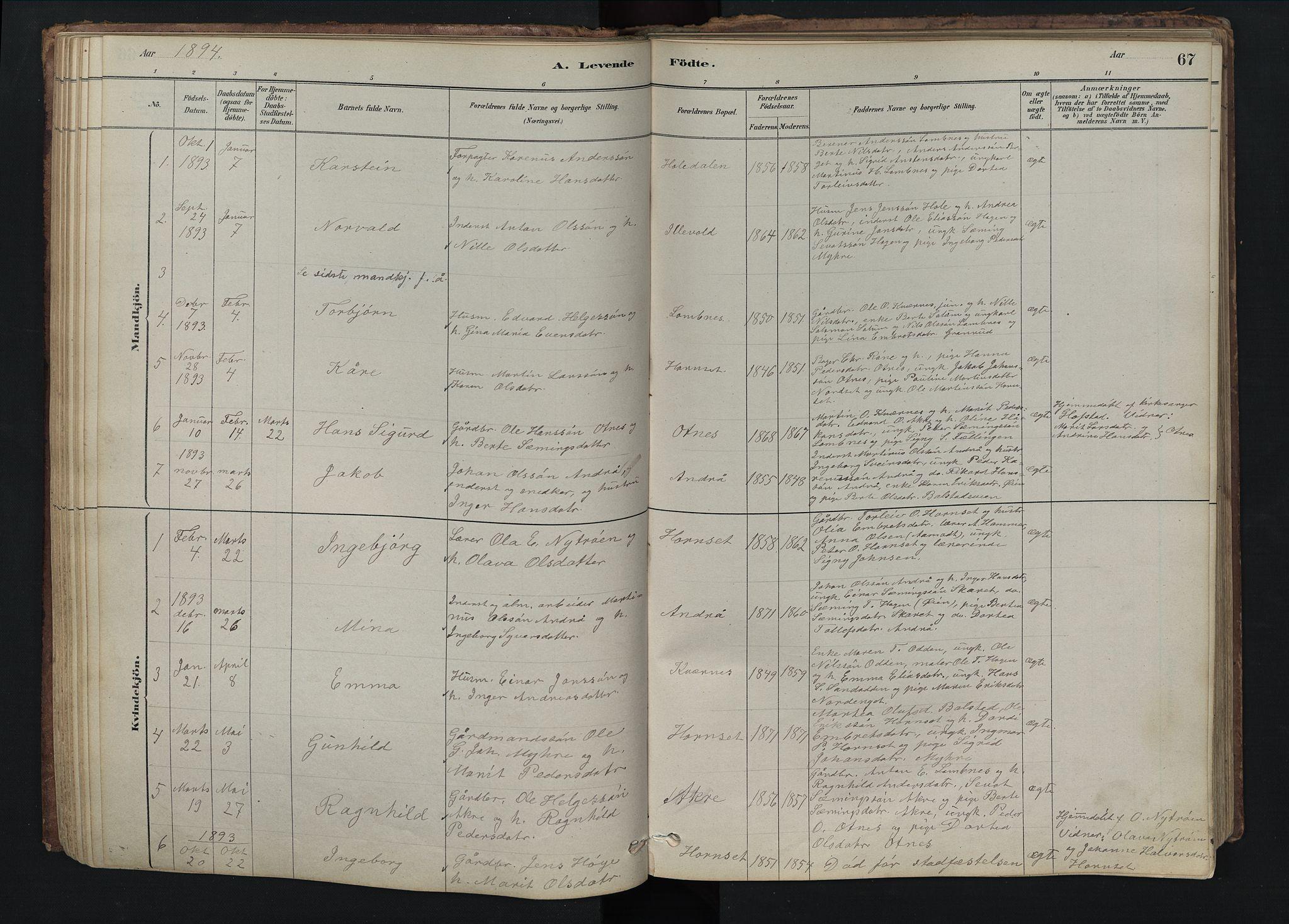 SAH, Rendalen prestekontor, H/Ha/Hab/L0009: Klokkerbok nr. 9, 1879-1902, s. 67