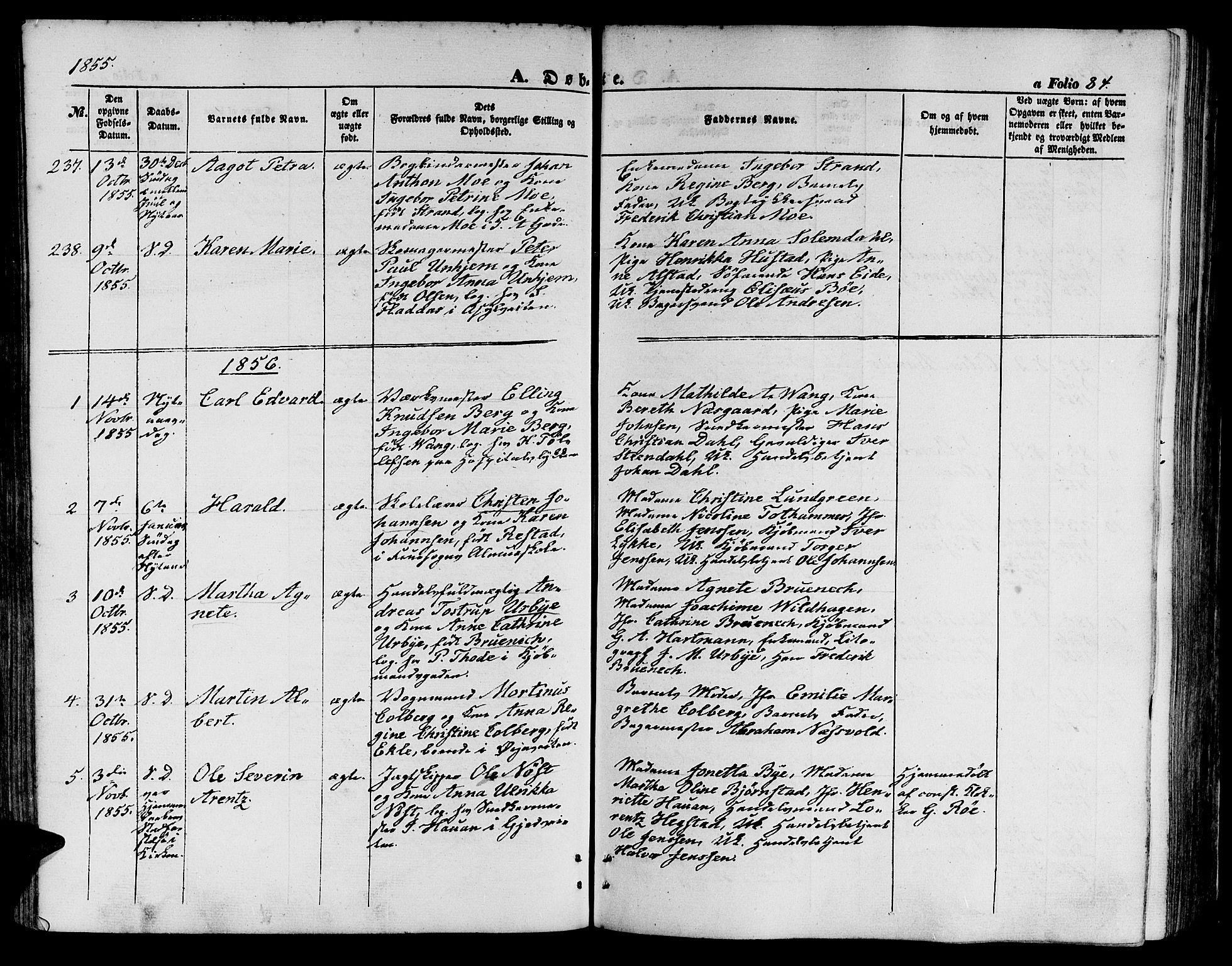 SAT, Ministerialprotokoller, klokkerbøker og fødselsregistre - Sør-Trøndelag, 602/L0138: Klokkerbok nr. 602C06, 1853-1858, s. 84