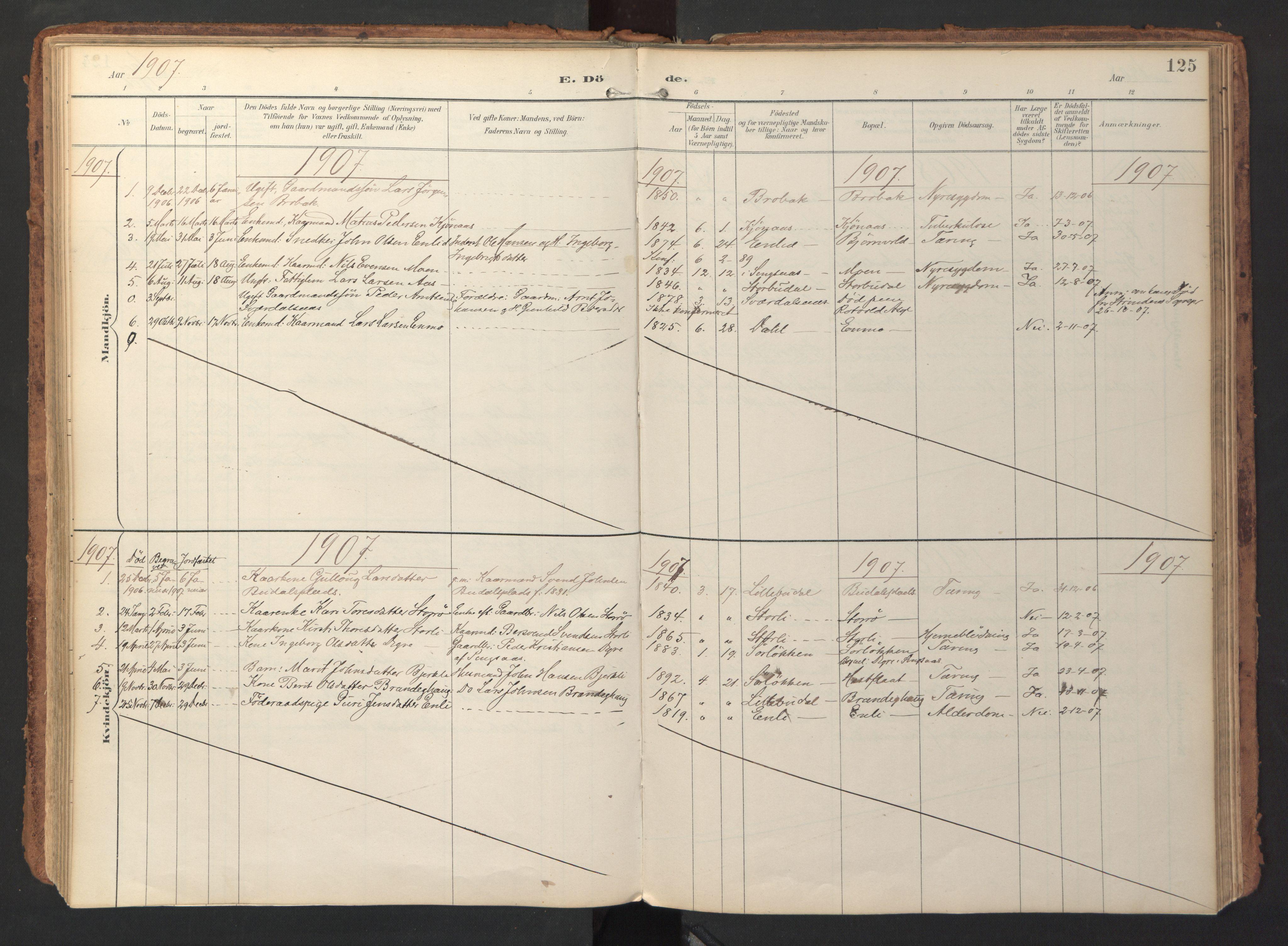 SAT, Ministerialprotokoller, klokkerbøker og fødselsregistre - Sør-Trøndelag, 690/L1050: Ministerialbok nr. 690A01, 1889-1929, s. 125