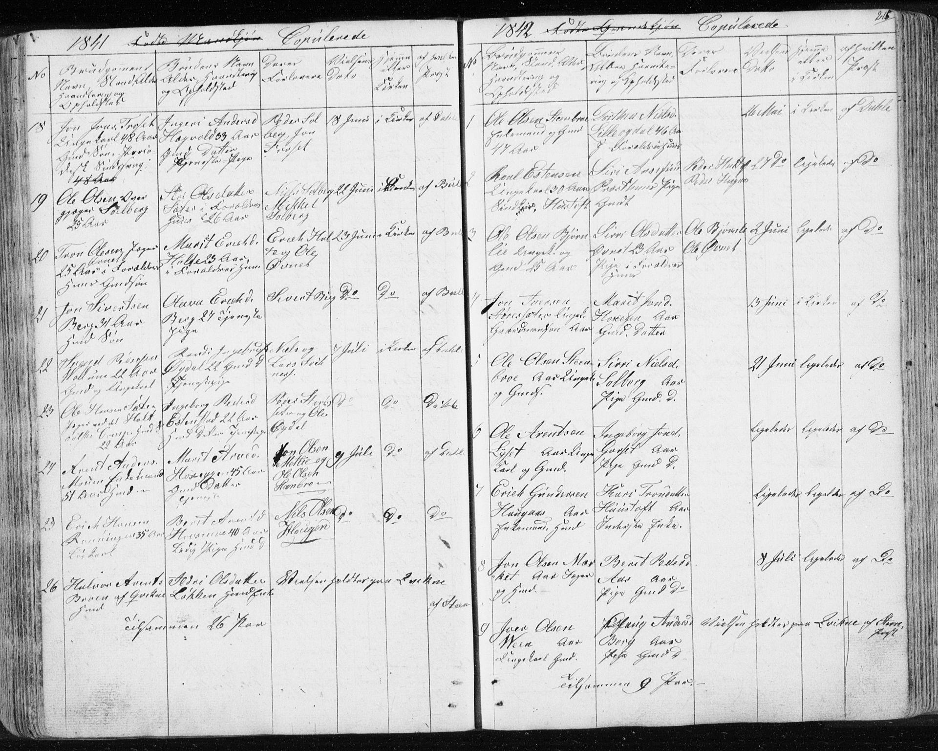 SAT, Ministerialprotokoller, klokkerbøker og fødselsregistre - Sør-Trøndelag, 689/L1043: Klokkerbok nr. 689C02, 1816-1892, s. 215
