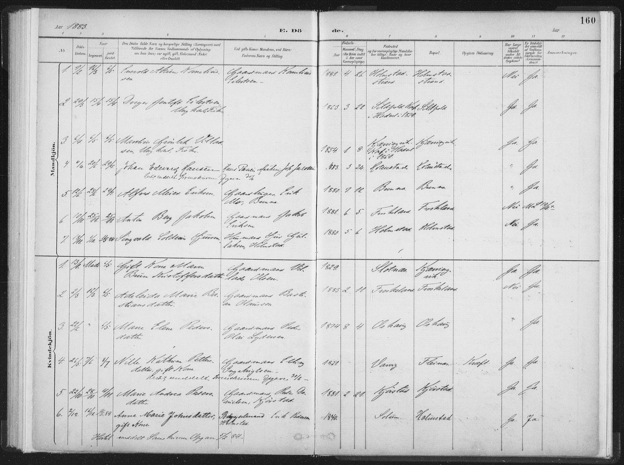 SAT, Ministerialprotokoller, klokkerbøker og fødselsregistre - Nordland, 890/L1286: Ministerialbok nr. 890A01, 1882-1902, s. 160