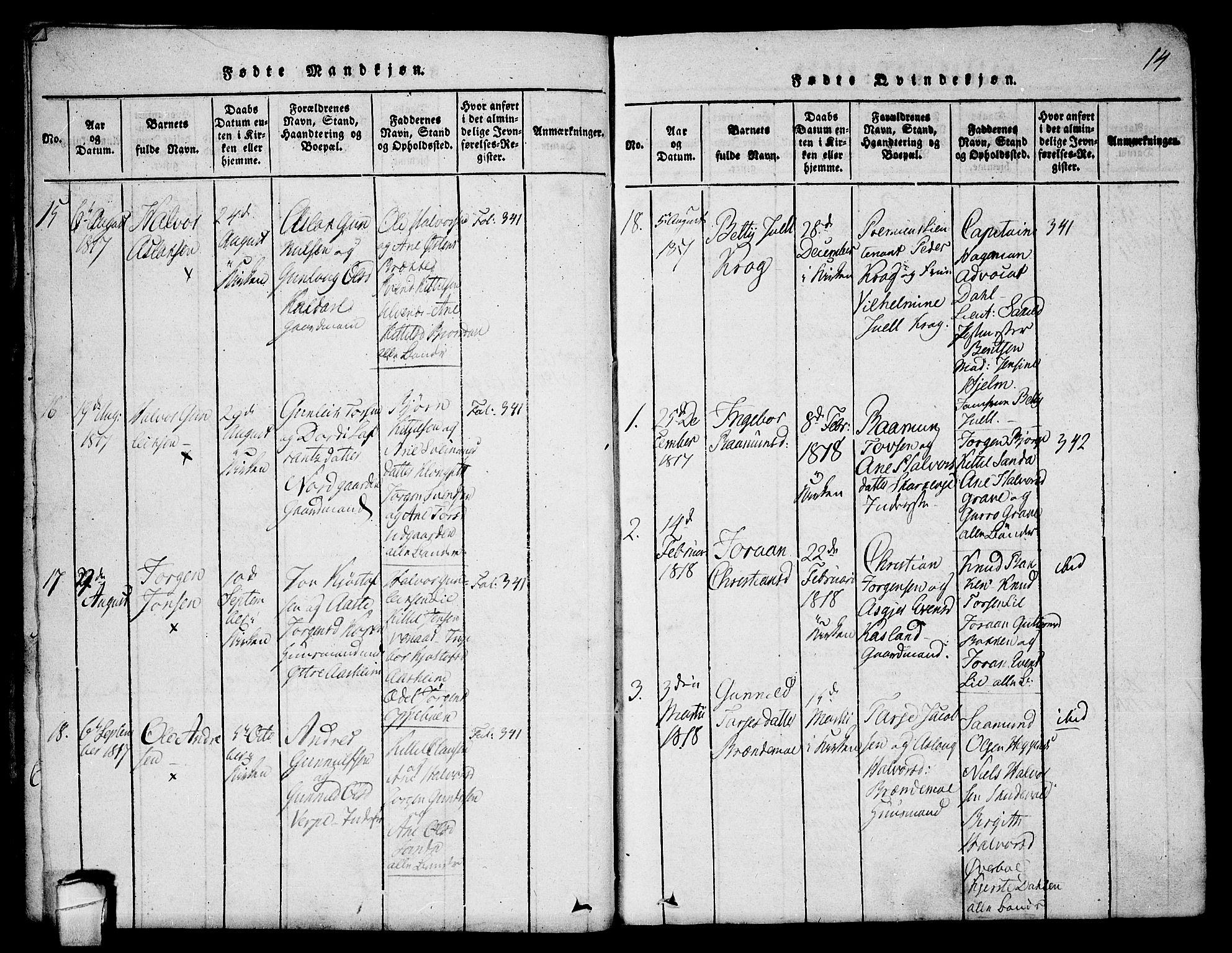 SAKO, Seljord kirkebøker, F/Fa/L0010: Ministerialbok nr. I 10, 1815-1831, s. 14