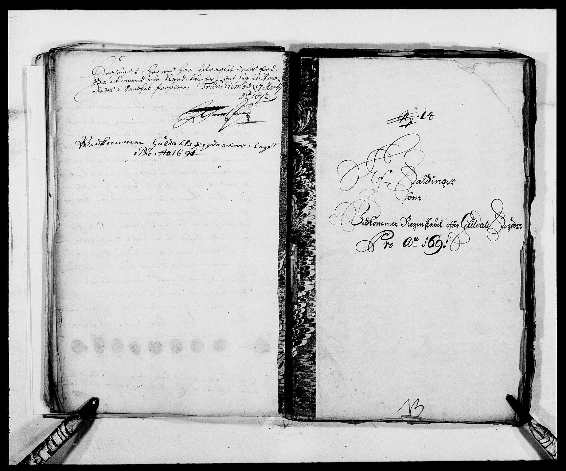 RA, Rentekammeret inntil 1814, Reviderte regnskaper, Fogderegnskap, R59/L3941: Fogderegnskap Gauldal, 1691, s. 209
