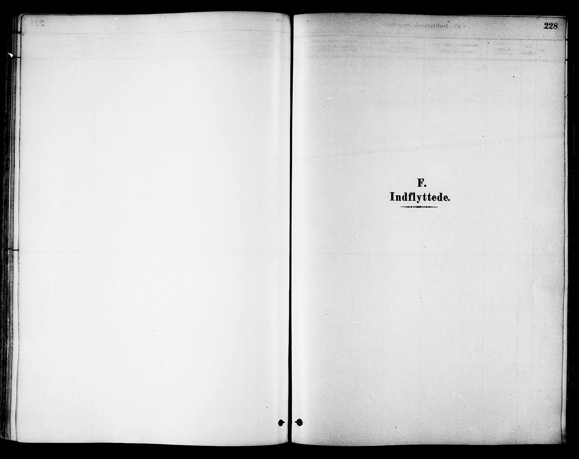 SAT, Ministerialprotokoller, klokkerbøker og fødselsregistre - Nord-Trøndelag, 786/L0686: Ministerialbok nr. 786A02, 1880-1887, s. 228