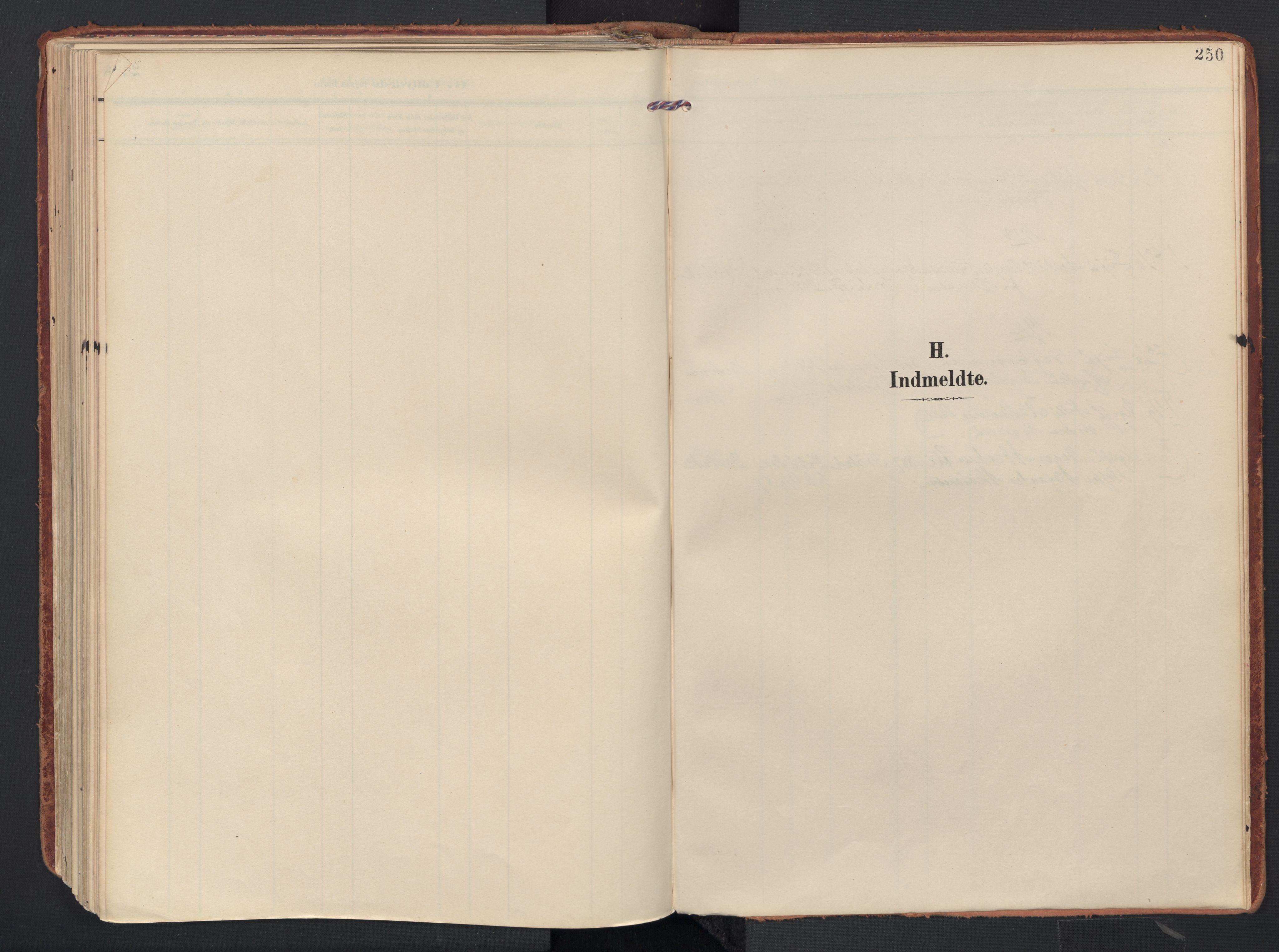 SAO, Drøbak prestekontor Kirkebøker, F/Fb/L0003: Ministerialbok nr. II 3, 1897-1918, s. 250
