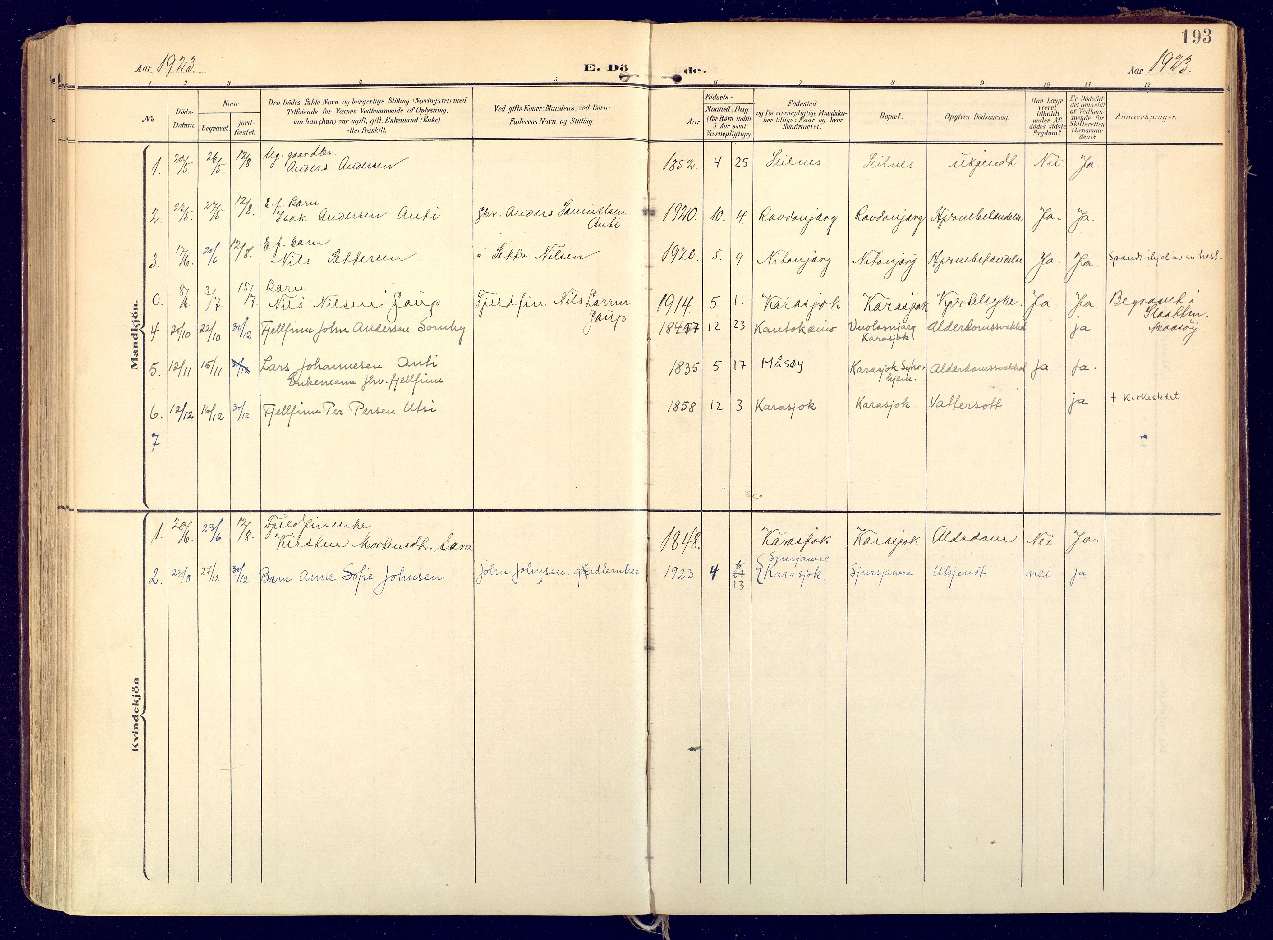 SATØ, Karasjok sokneprestkontor, H/Ha: Ministerialbok nr. 3, 1907-1926, s. 193