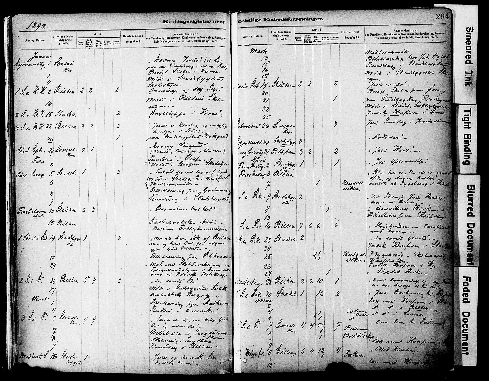 SAT, Ministerialprotokoller, klokkerbøker og fødselsregistre - Sør-Trøndelag, 646/L0615: Ministerialbok nr. 646A13, 1885-1900, s. 294