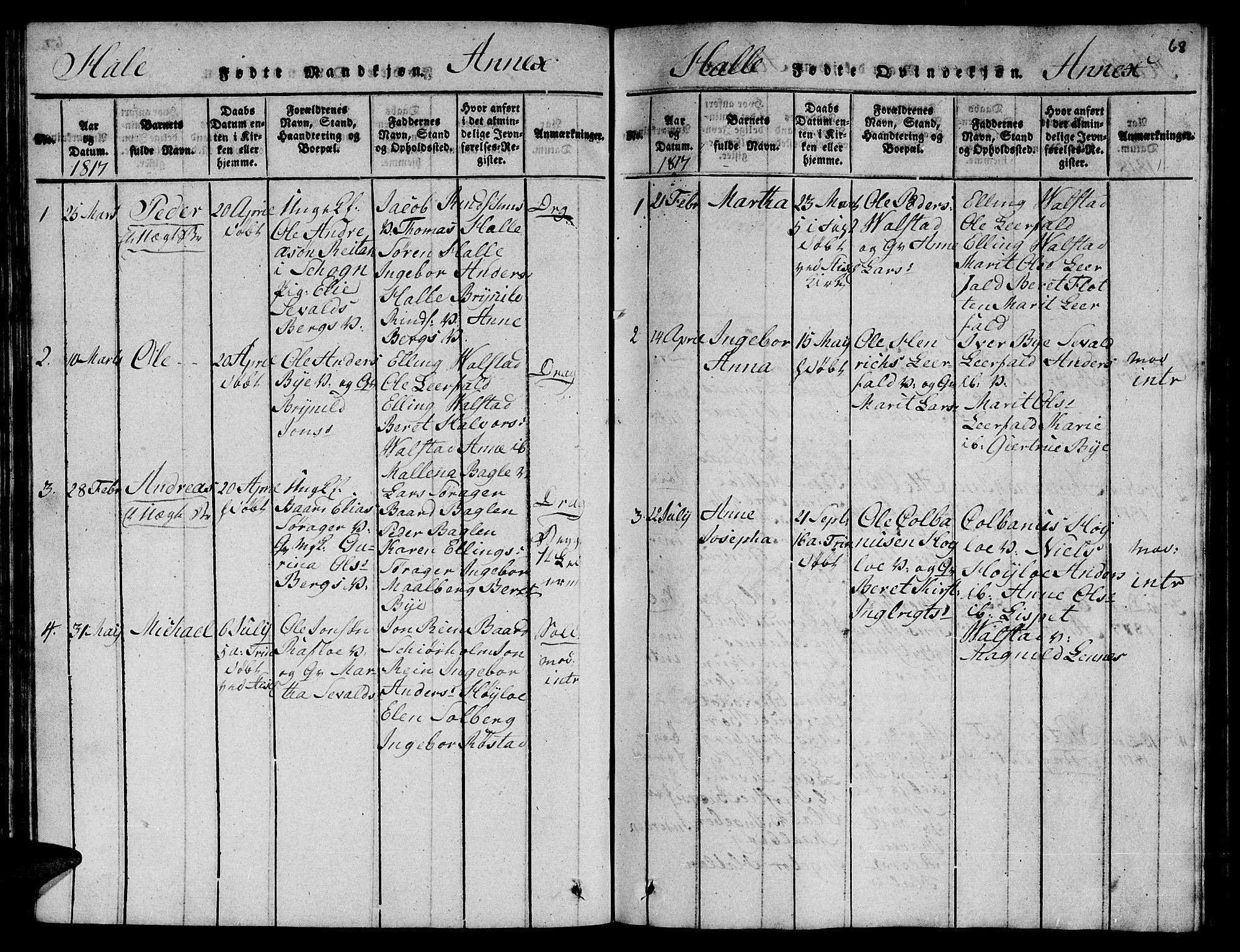 SAT, Ministerialprotokoller, klokkerbøker og fødselsregistre - Nord-Trøndelag, 723/L0251: Klokkerbok nr. 723C01 /3, 1817-1821, s. 68