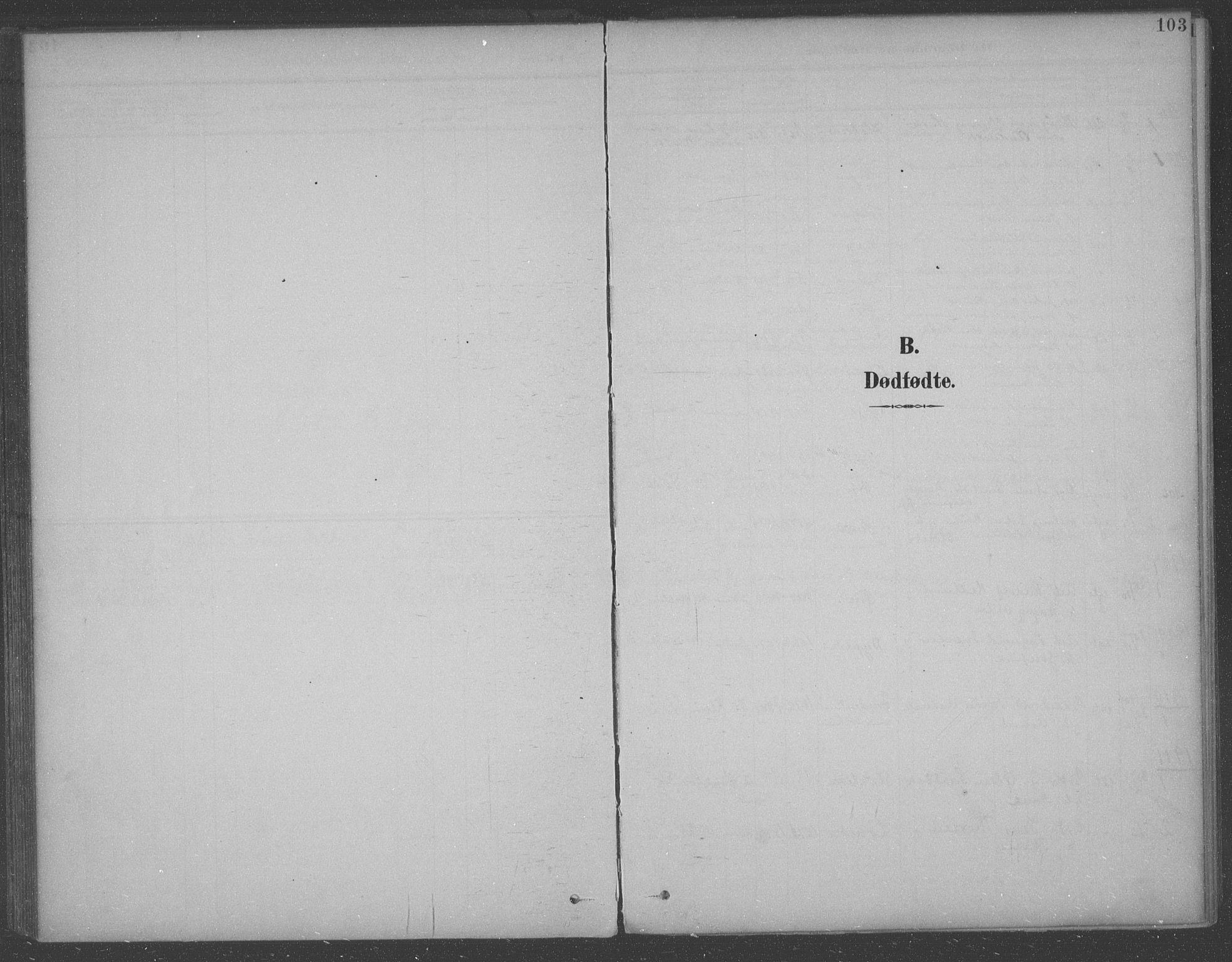 SAO, Aremark prestekontor Kirkebøker, F/Fb/L0005: Ministerialbok nr. II 5, 1895-1919, s. 103