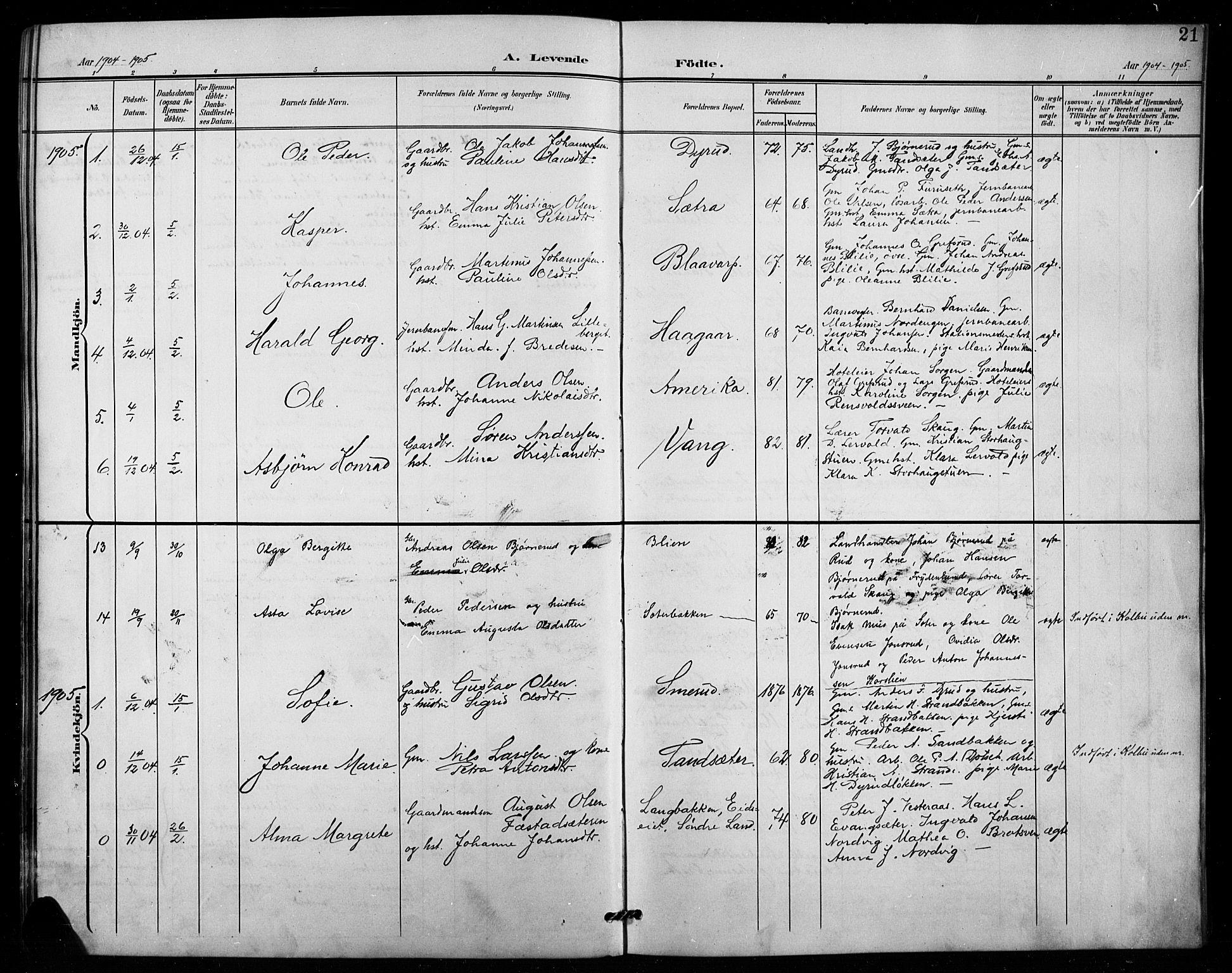 SAH, Vestre Toten prestekontor, H/Ha/Hab/L0016: Klokkerbok nr. 16, 1901-1915, s. 21