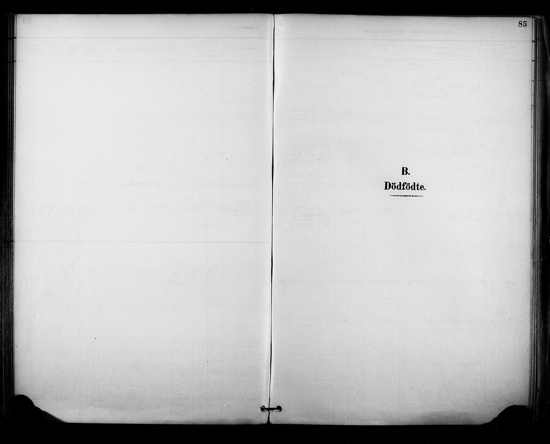 SAKO, Sauherad kirkebøker, F/Fa/L0009: Ministerialbok nr. I 9, 1887-1912, s. 85