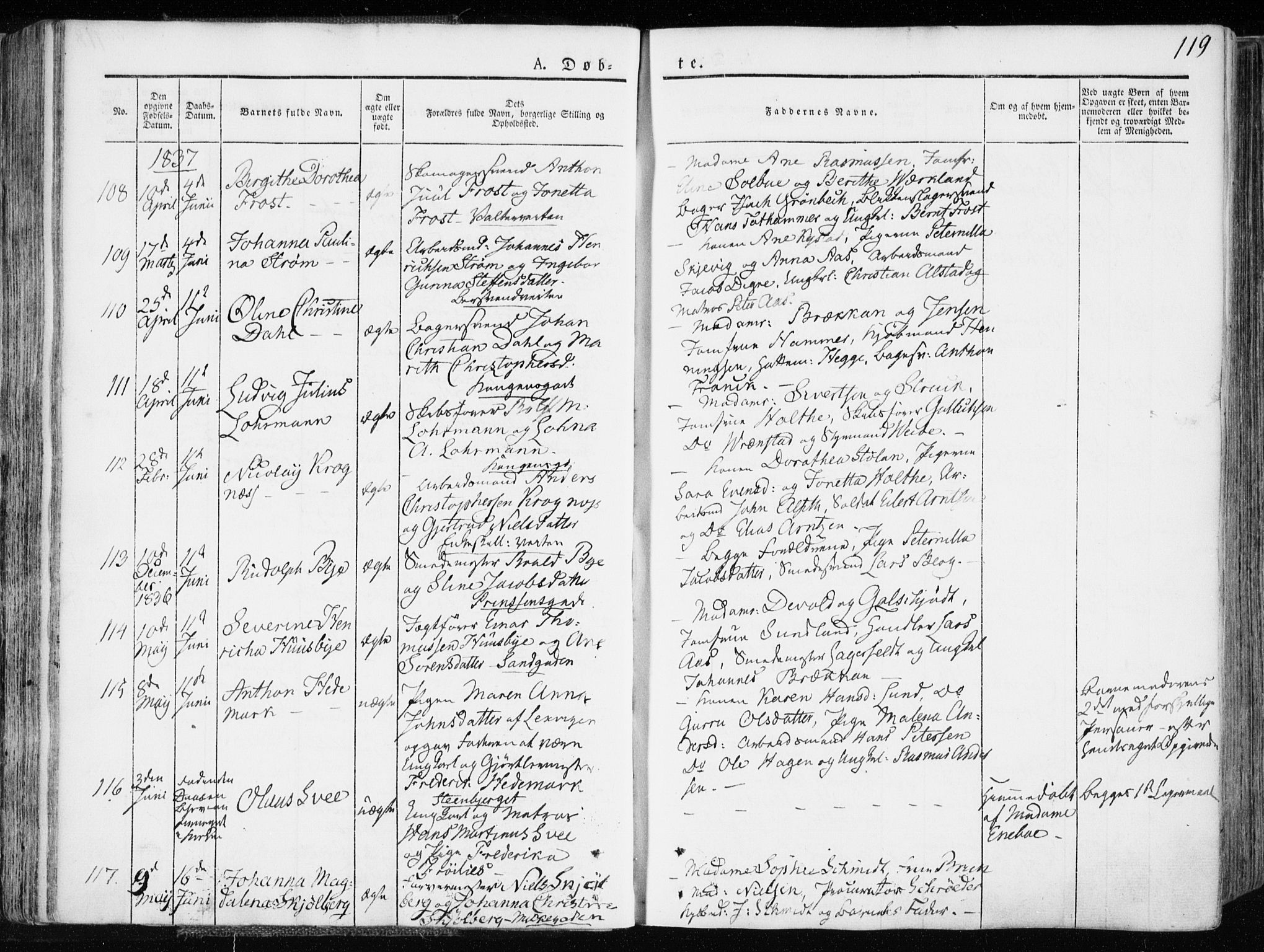 SAT, Ministerialprotokoller, klokkerbøker og fødselsregistre - Sør-Trøndelag, 601/L0047: Ministerialbok nr. 601A15, 1831-1839, s. 119