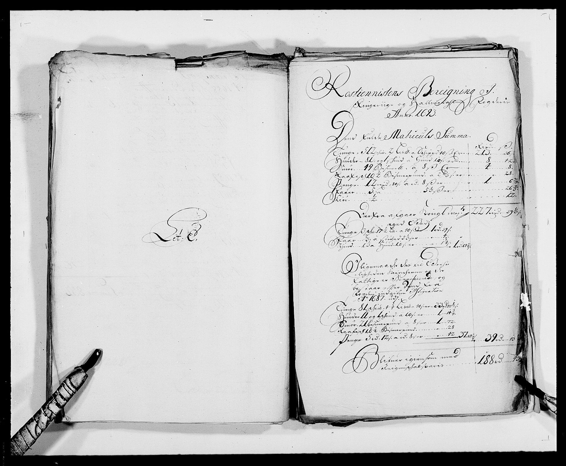 RA, Rentekammeret inntil 1814, Reviderte regnskaper, Fogderegnskap, R21/L1450: Fogderegnskap Ringerike og Hallingdal, 1693, s. 106