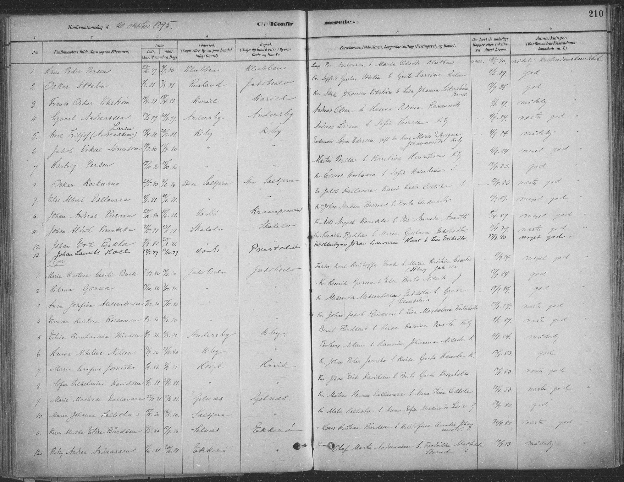 SATØ, Vadsø sokneprestkontor, H/Ha/L0009kirke: Ministerialbok nr. 9, 1881-1917, s. 210