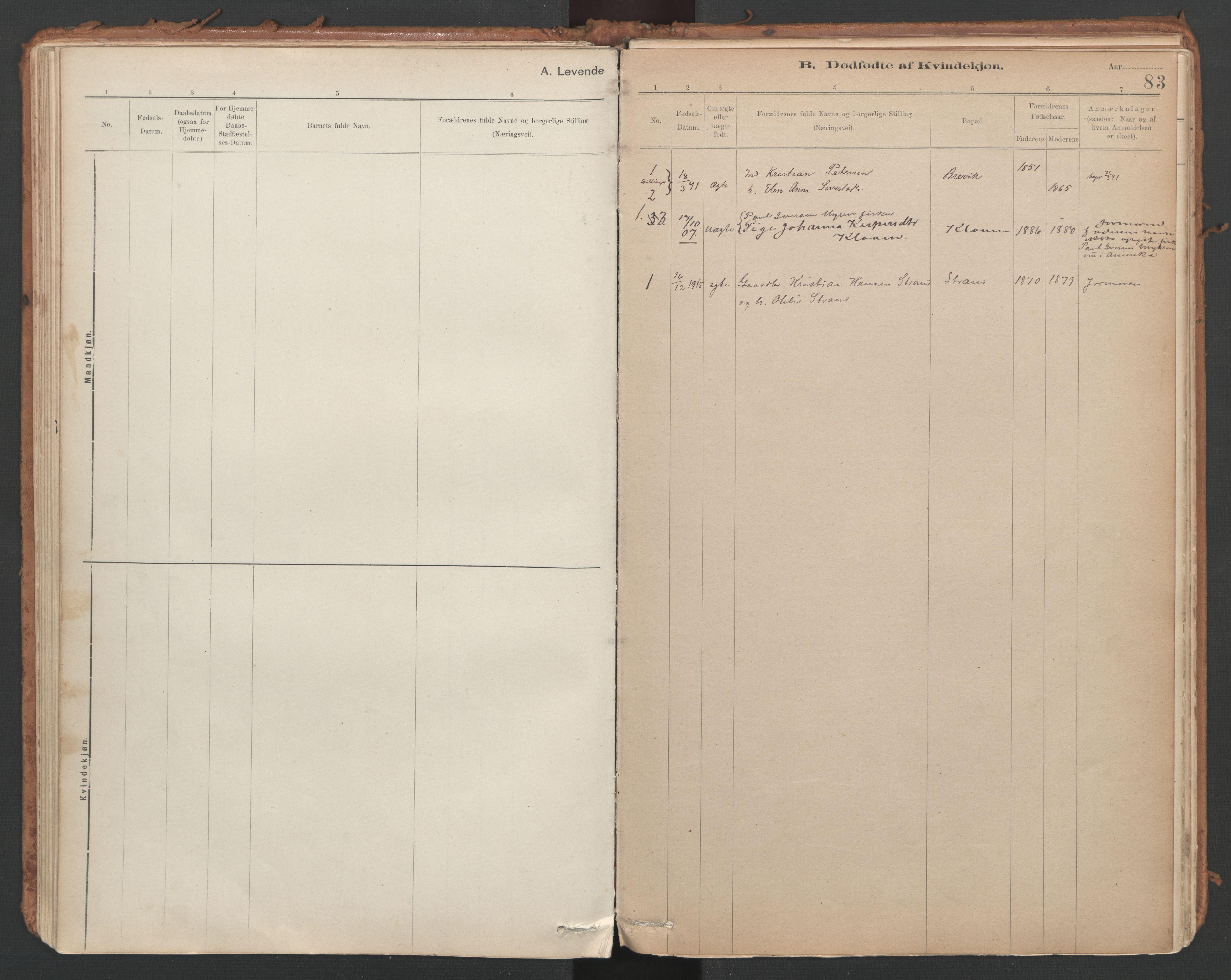 SAT, Ministerialprotokoller, klokkerbøker og fødselsregistre - Sør-Trøndelag, 639/L0572: Ministerialbok nr. 639A01, 1890-1920, s. 83