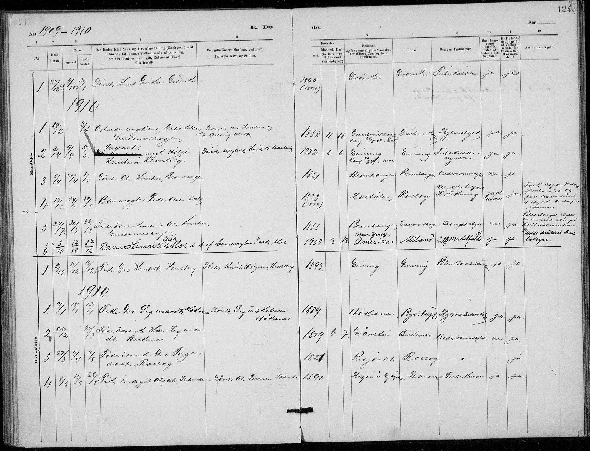 SAKO, Tinn kirkebøker, F/Fb/L0002: Ministerialbok nr. II 2, 1878-1917, s. 124